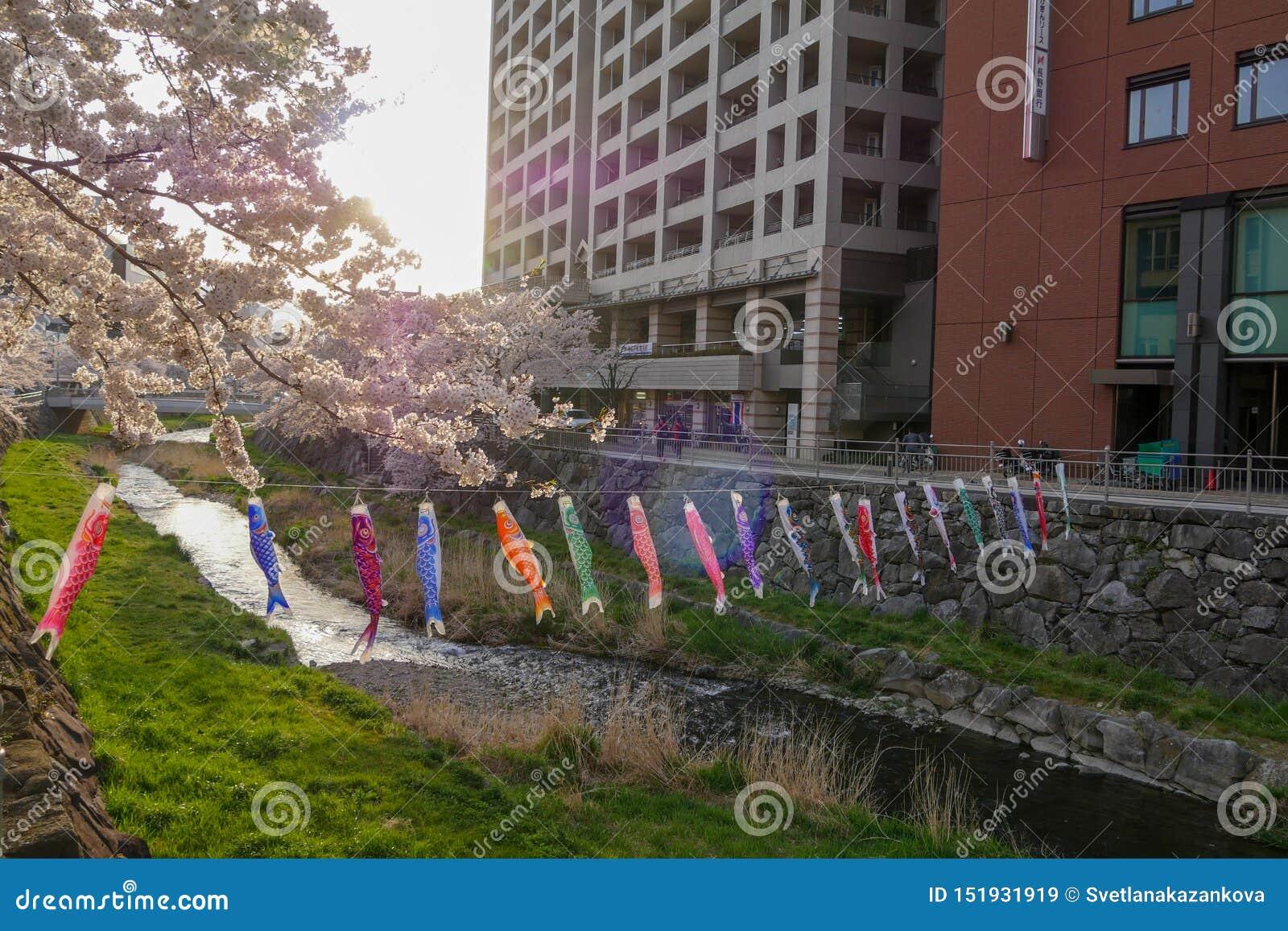 Poissons à Matsumoto, Japon