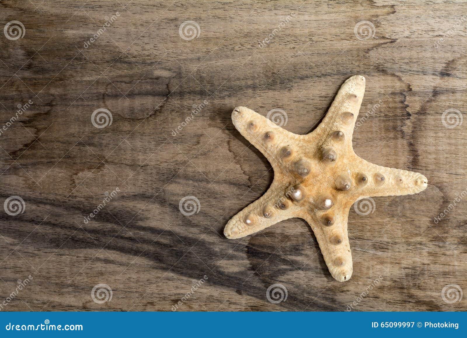Poissons d étoile