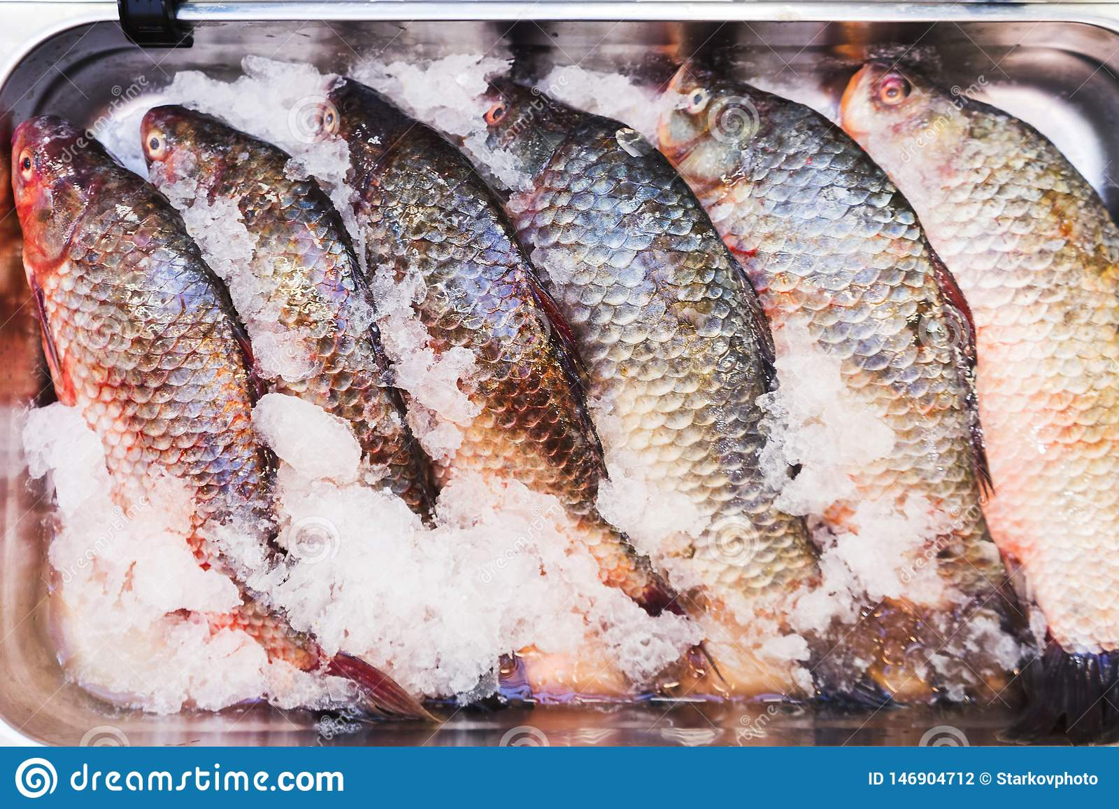 Poissons effrayants frais sur le compteur dans le réfrigérateur sur un marché de pêche de petit agriculteur