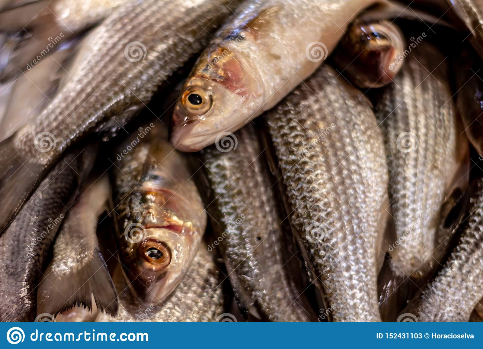 Poissons frais sur le march? Approche des échelles et de la peau des poissons de la mer Protéines de la mer