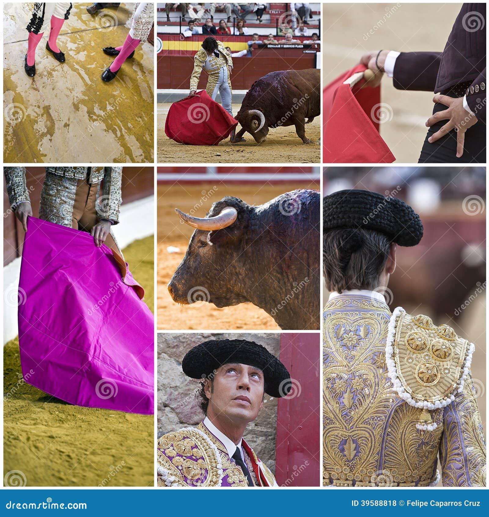 Pojęcie bullfighting w Hiszpania