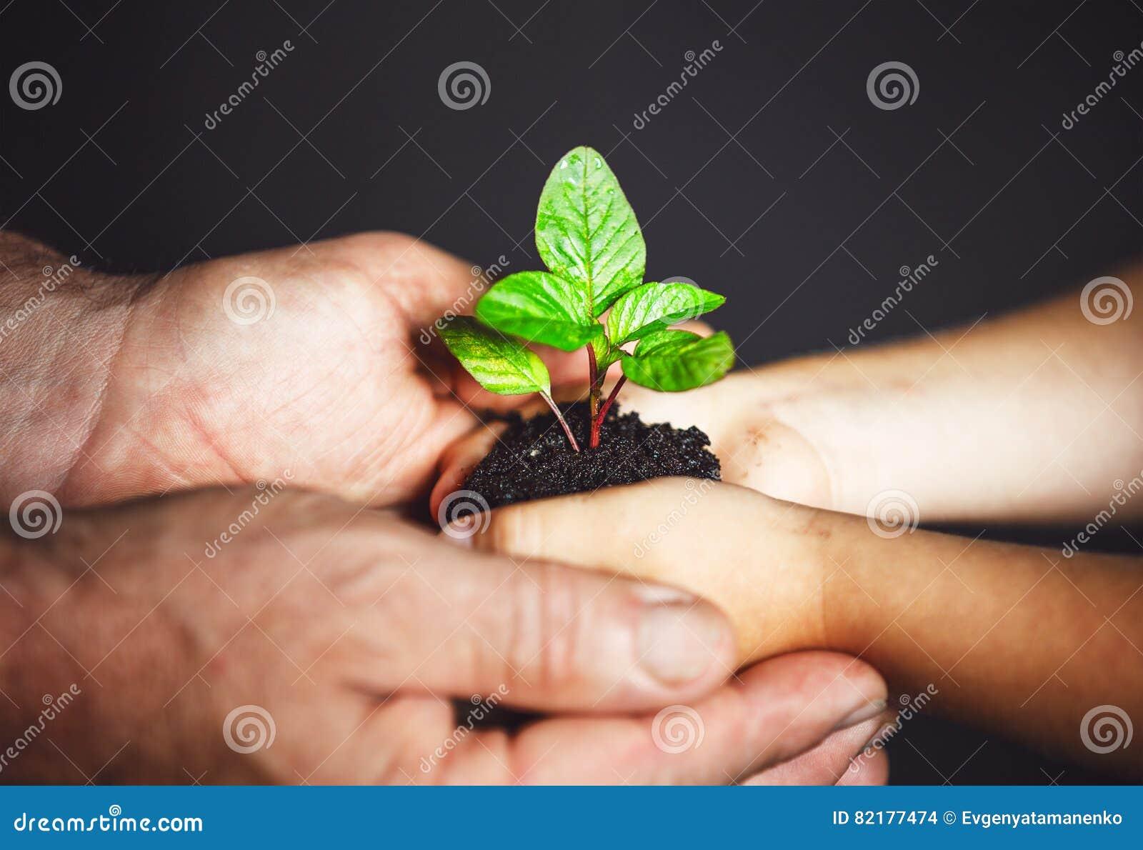 Pojęcie rozwój i pokolenie starsze osoby i dziecka mienie obsługują