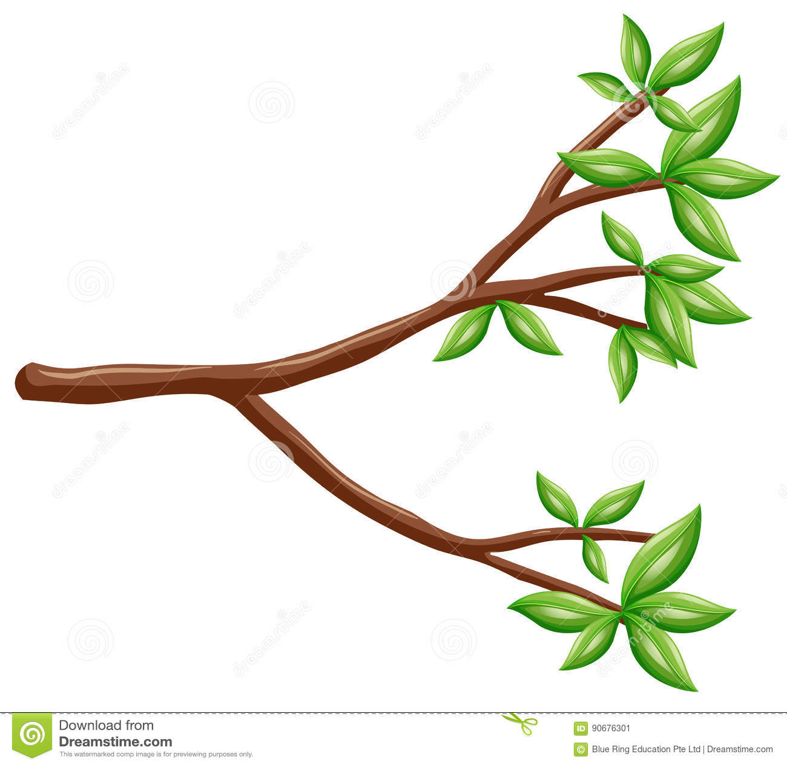 Pojedyncza gałąź z zielonymi liśćmi