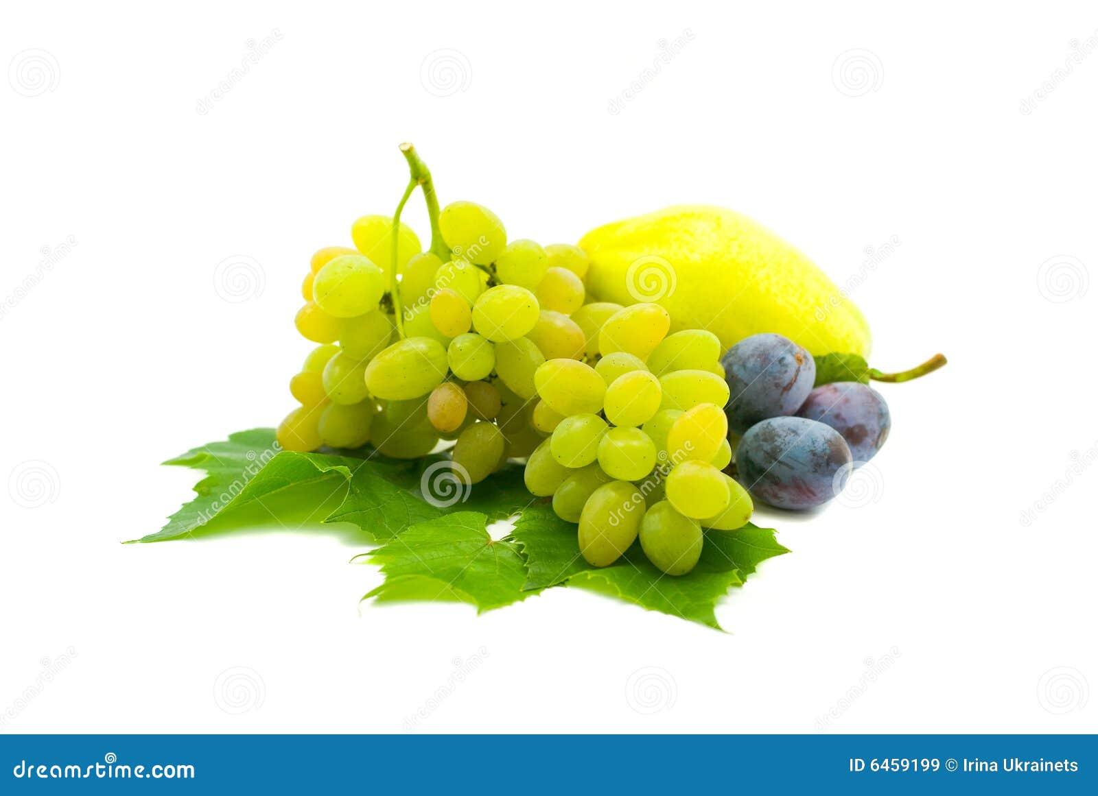 Pojedynczy owoc białe tło