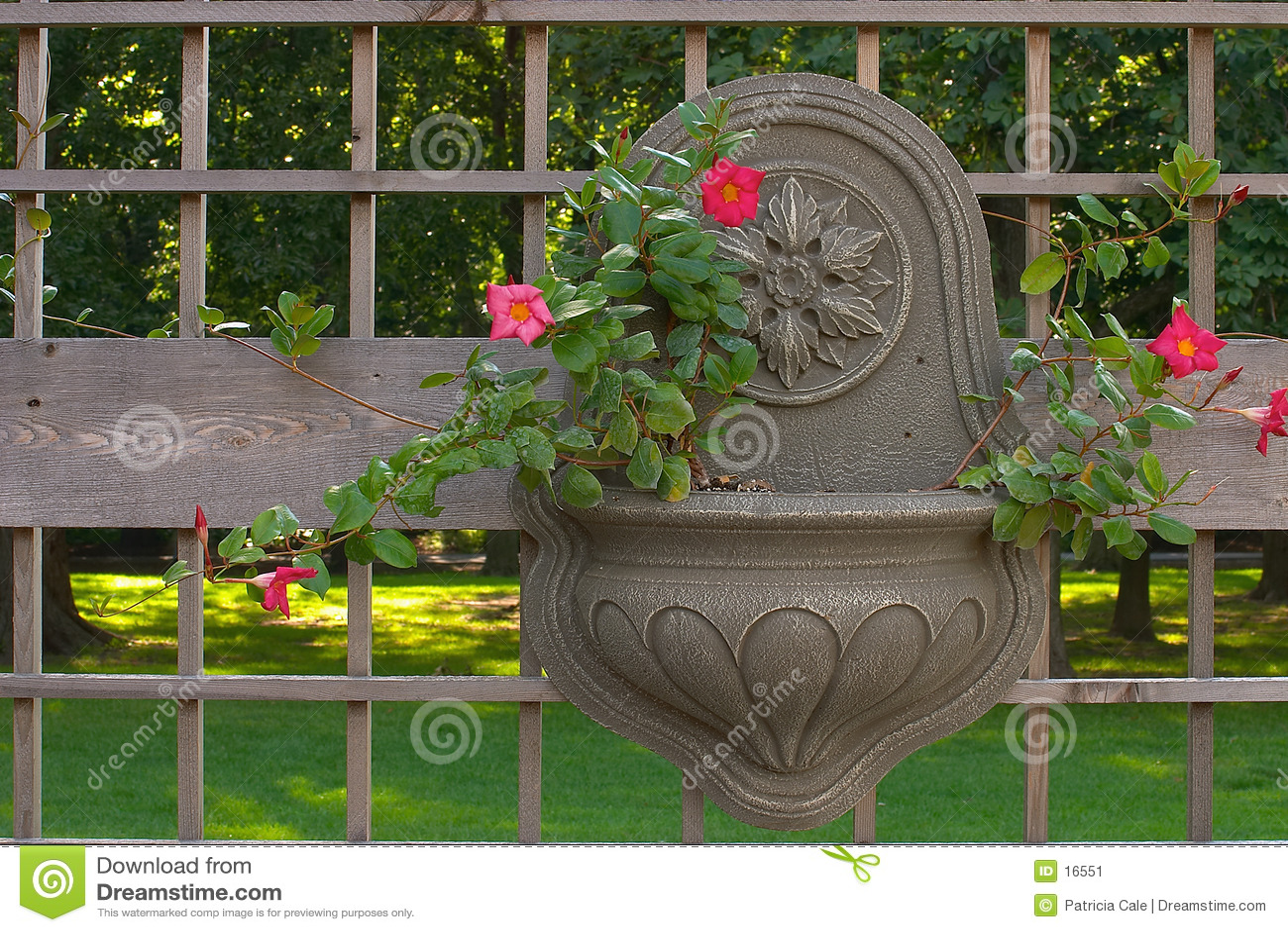 Pojemnik wisi ogrodu