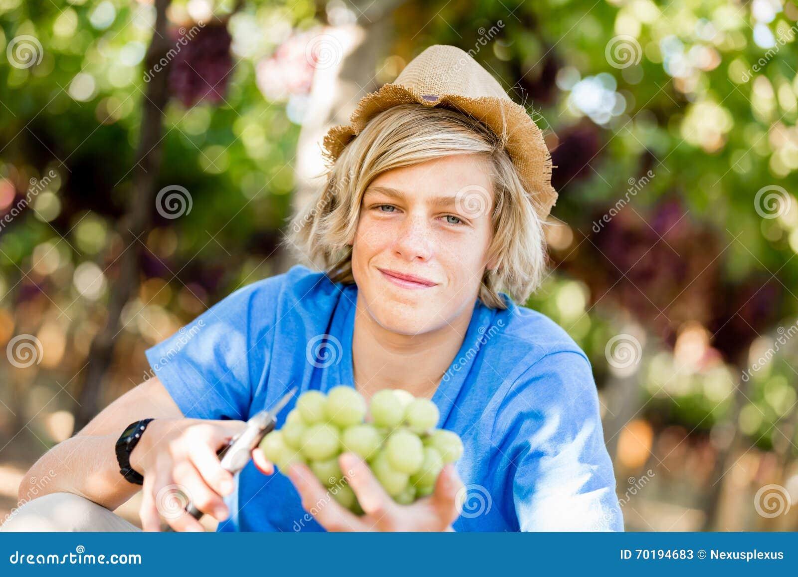 Pojke i vingård