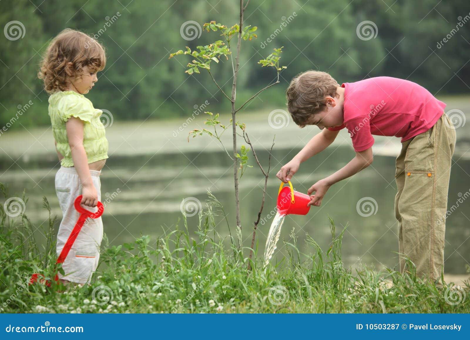 Pojkeflickan häller plantatreen