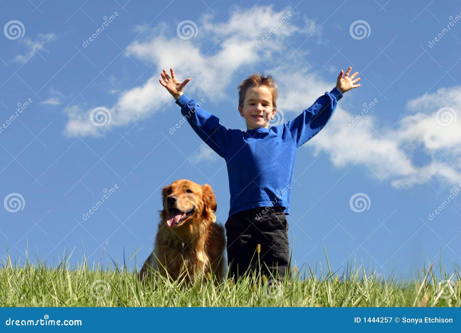Pojkehundsky