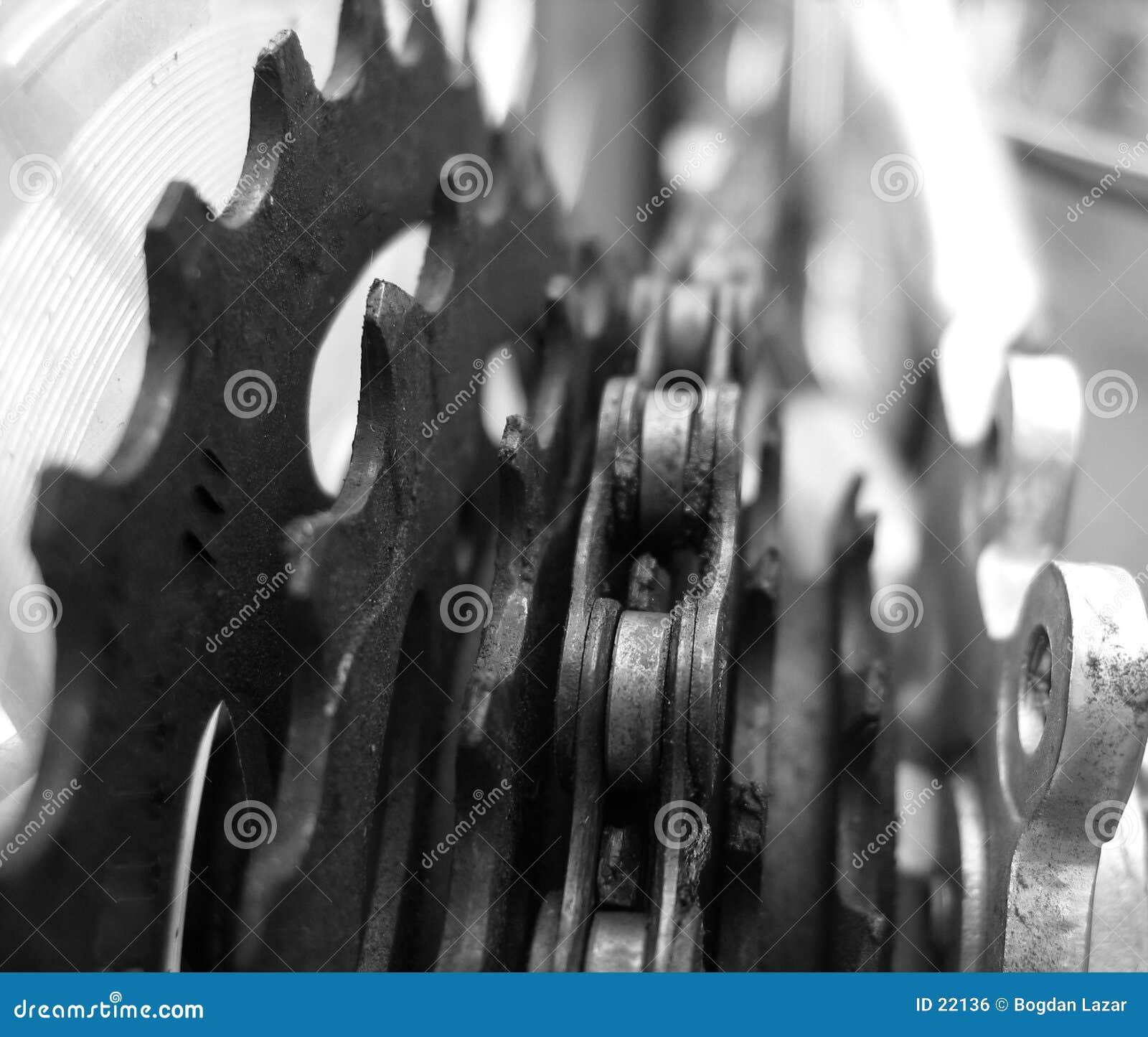 Pokarmowego roweru szczegół