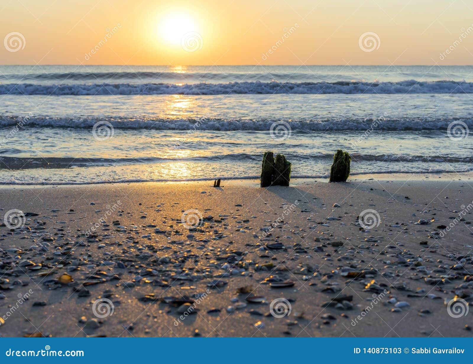Pokojowy i relaksujący miejsce morzem z sensem dla
