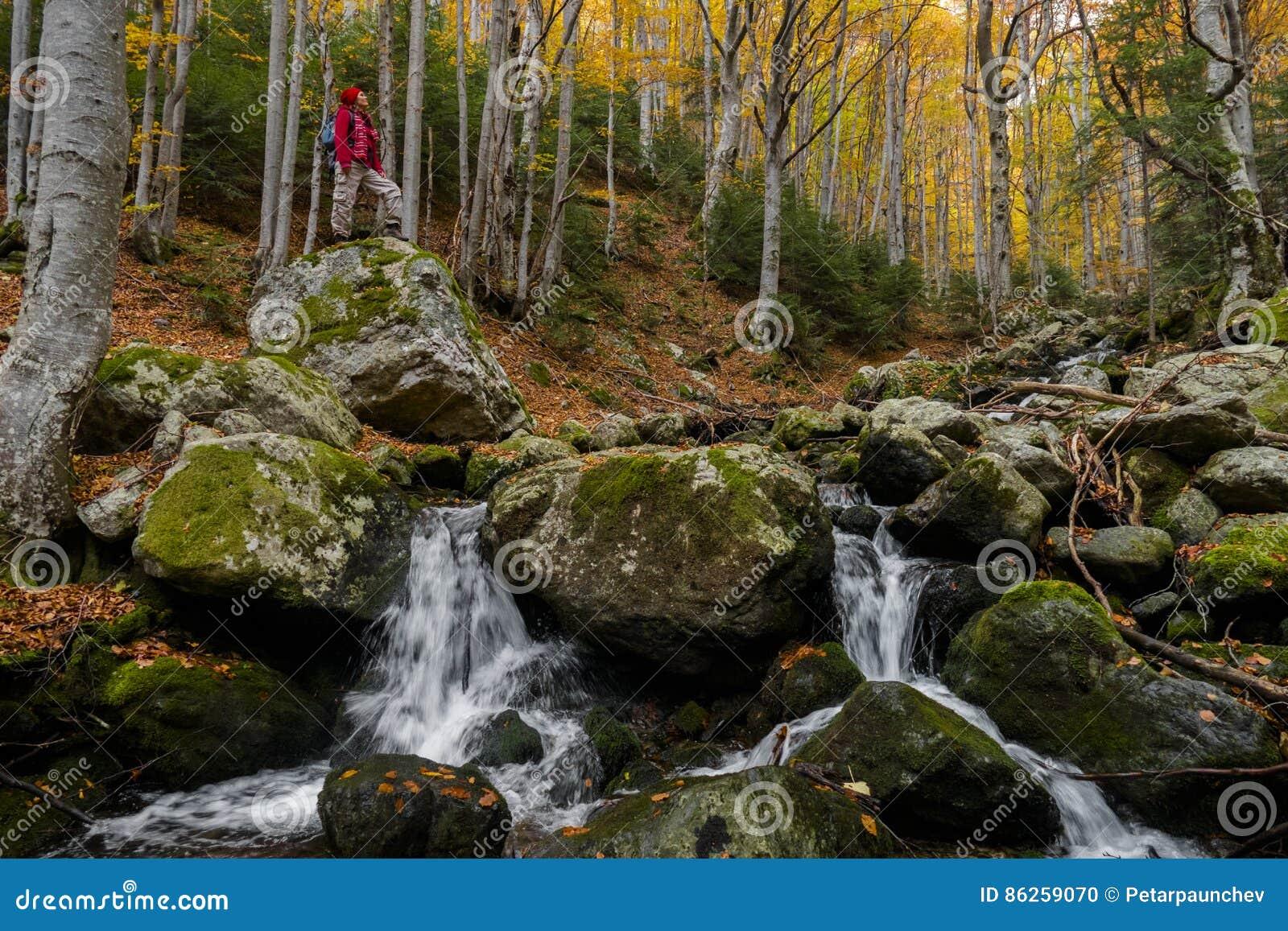 Pokojowy jesienny raj