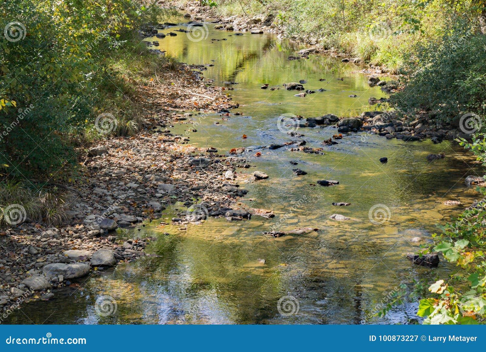 Pokojowy Pstrągowy strumień