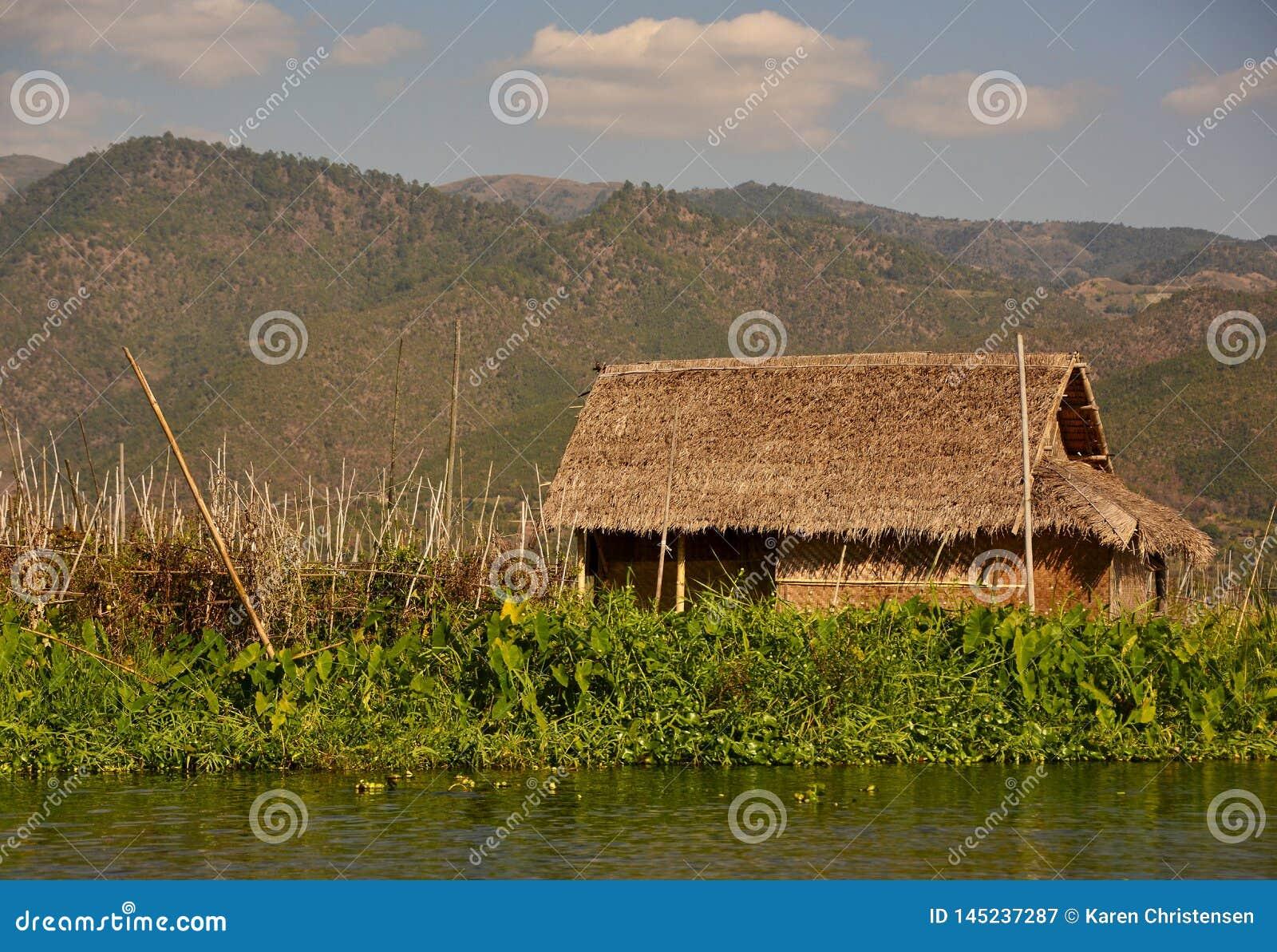 Pokrywająca strzechą buda na Inle jeziorze
