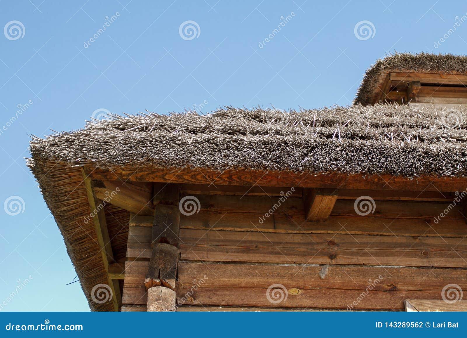 Pokrywający strzechą dach tradycyjny Belarusian wioski dom