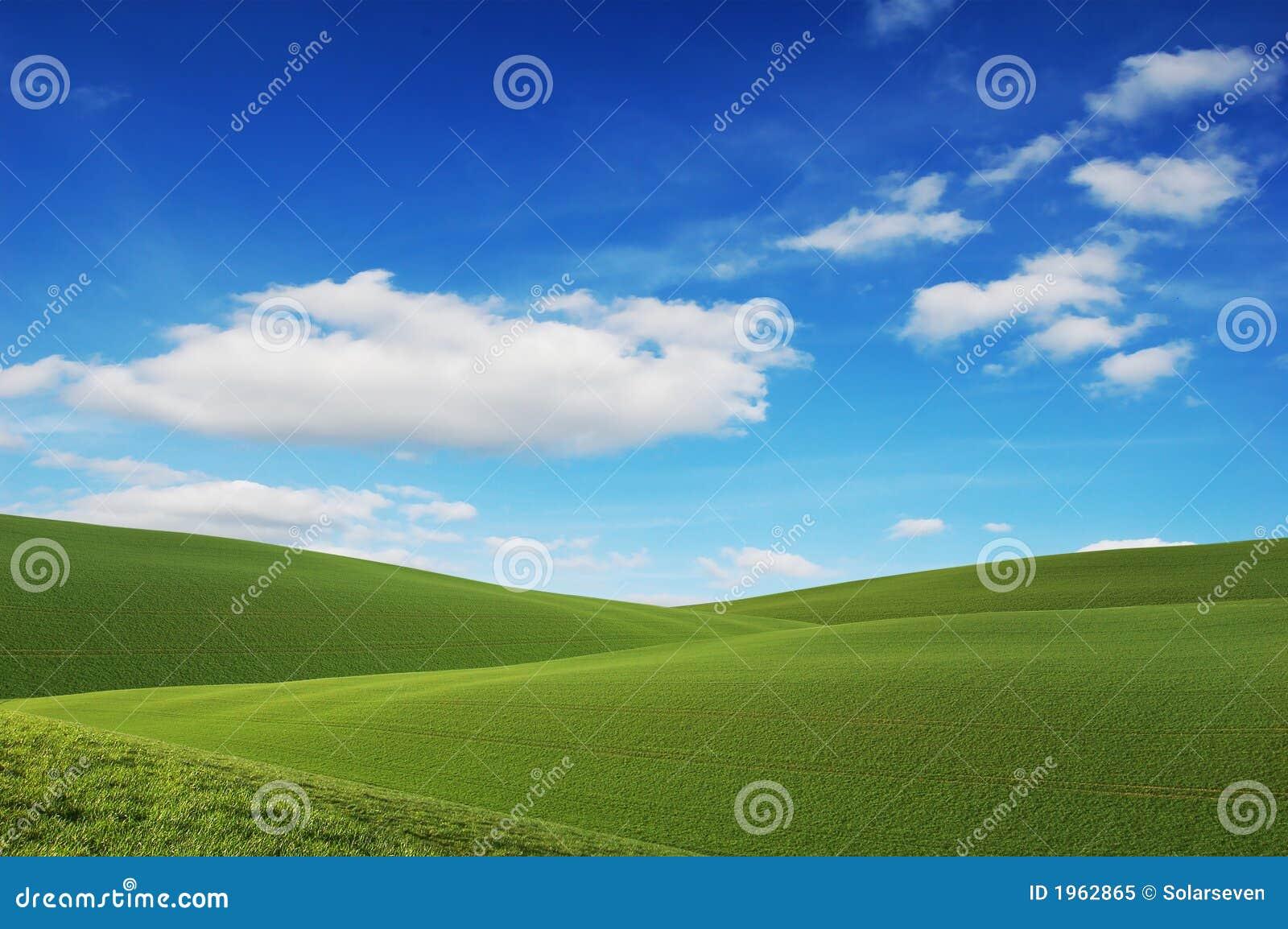 Pola zielone niebo niebieskie