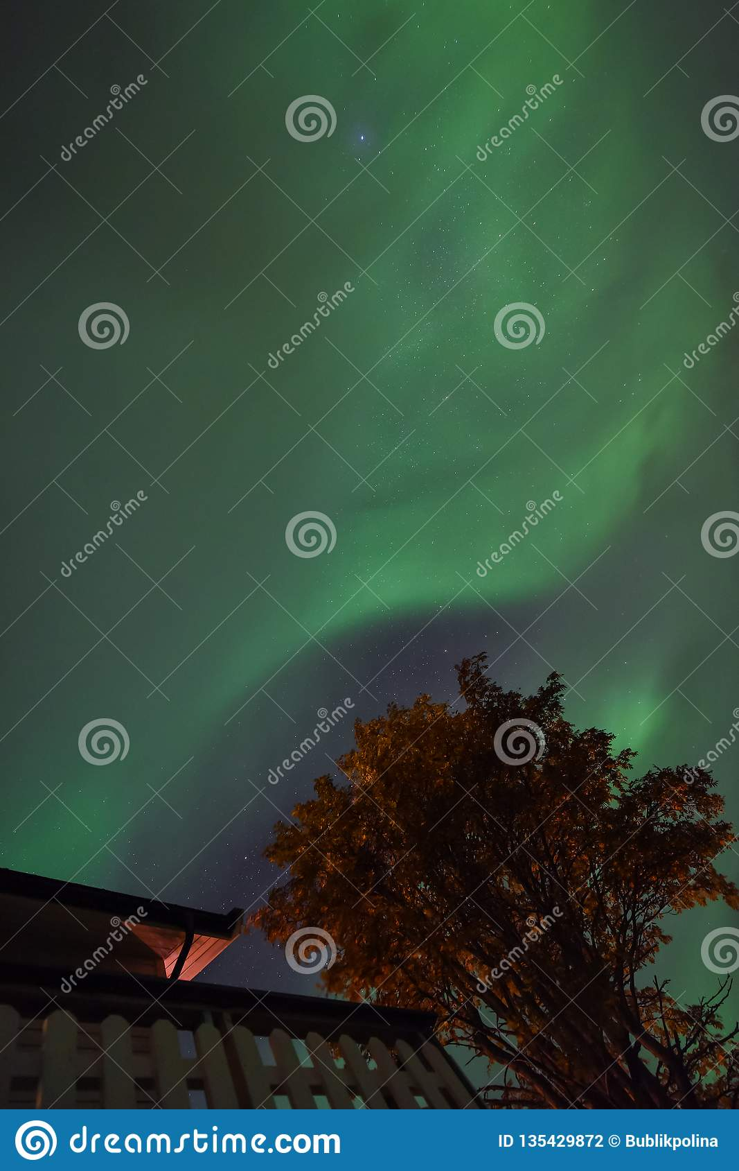 Polar Arctic Northern Lights Aurora Borealis Sky Star In