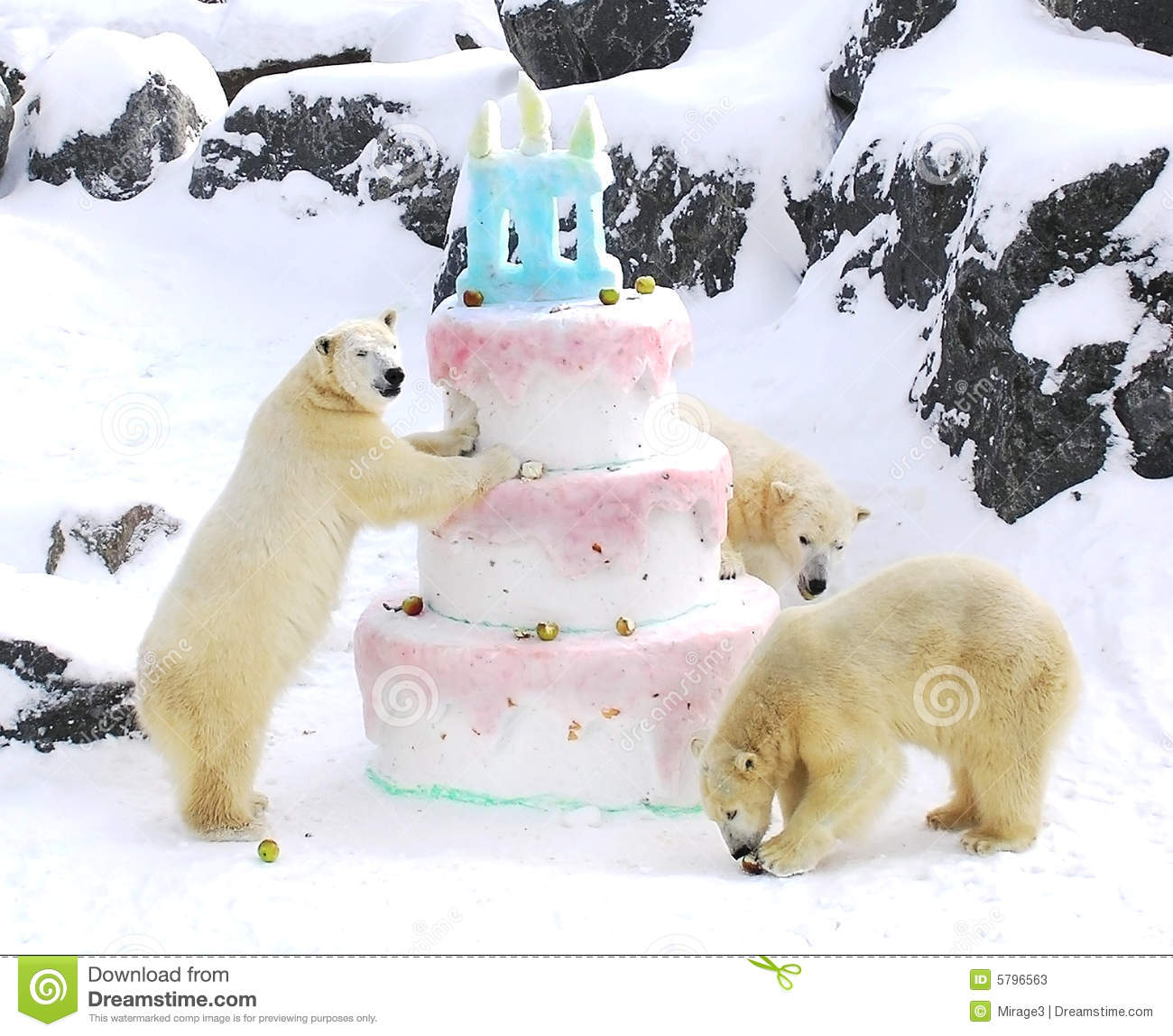Download Polar Bears Giant Birthday Cake Stock Image - Image of happy, polar: 5796563