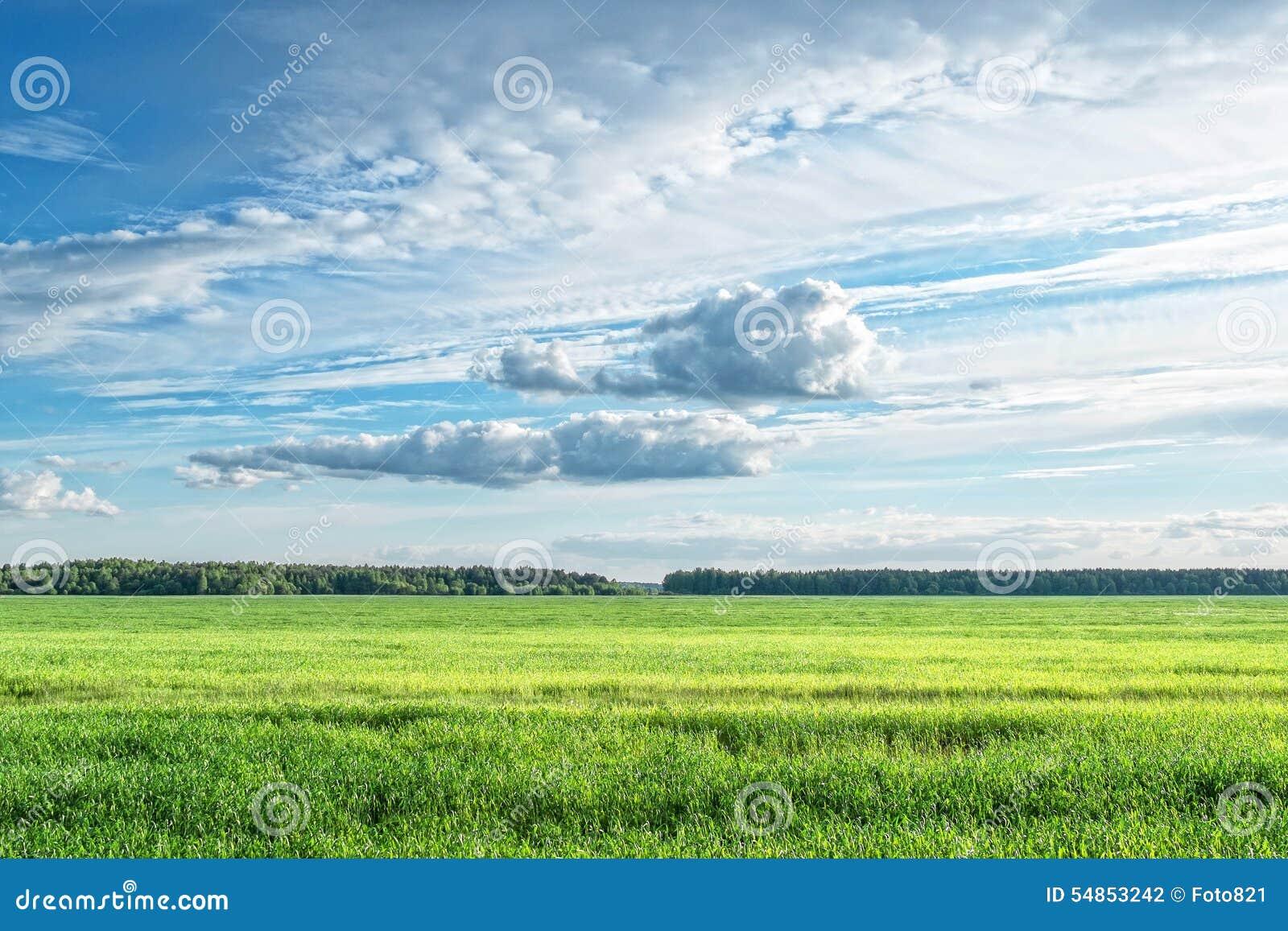 Pole chmury