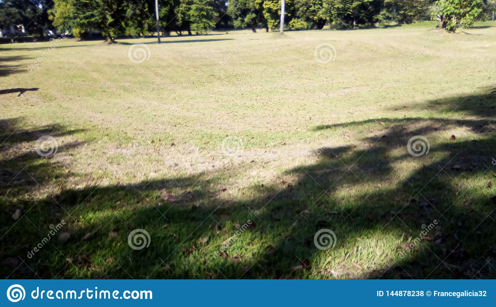 Pole golfowe lub śródpolna lato sceneria