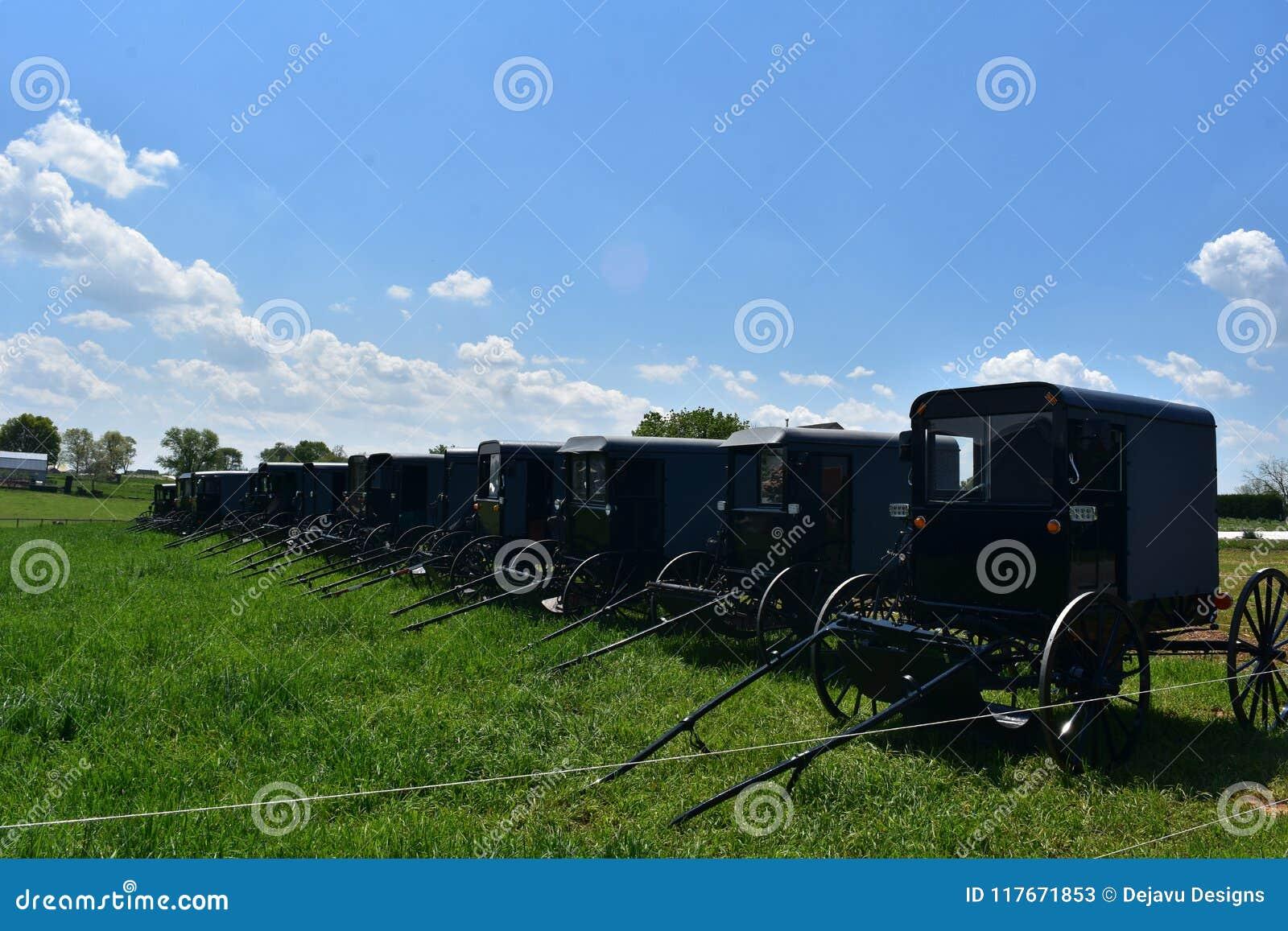 Pole Wypełniający z Amish powozikami Parkującymi w Lancaster okręgu administracyjnym