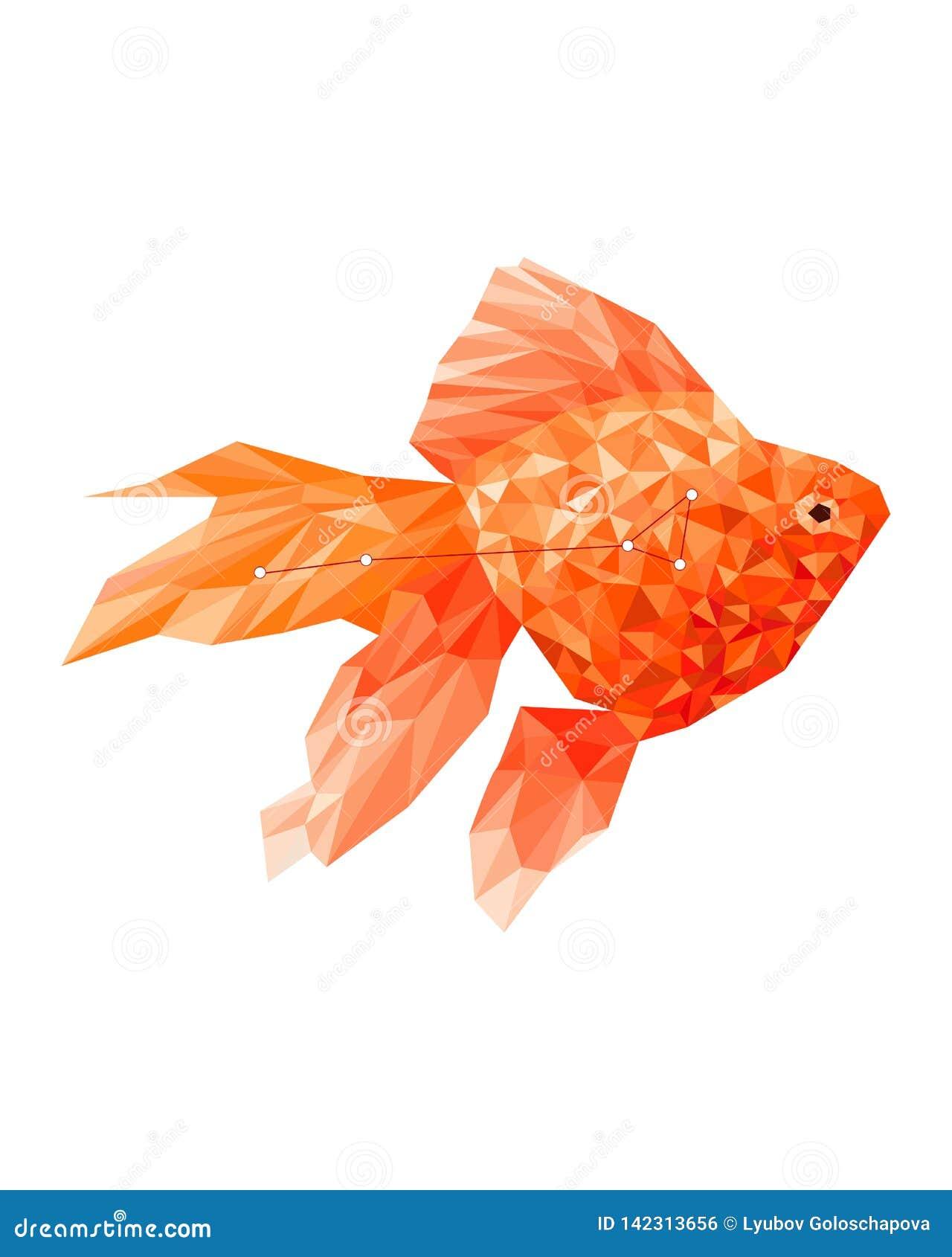Poli- goldfish sylwetka w geometrycznym stylu