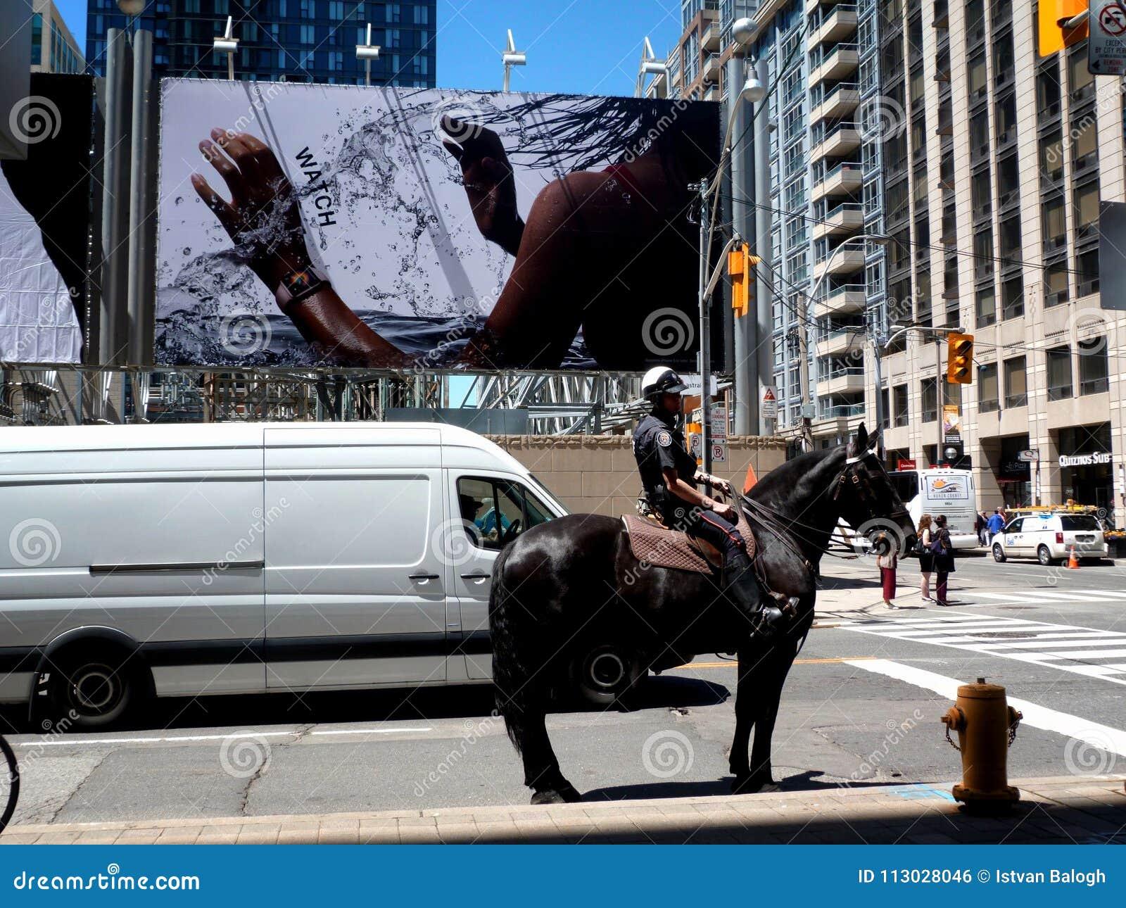 Policía montada en Toronto que espera la luz verde