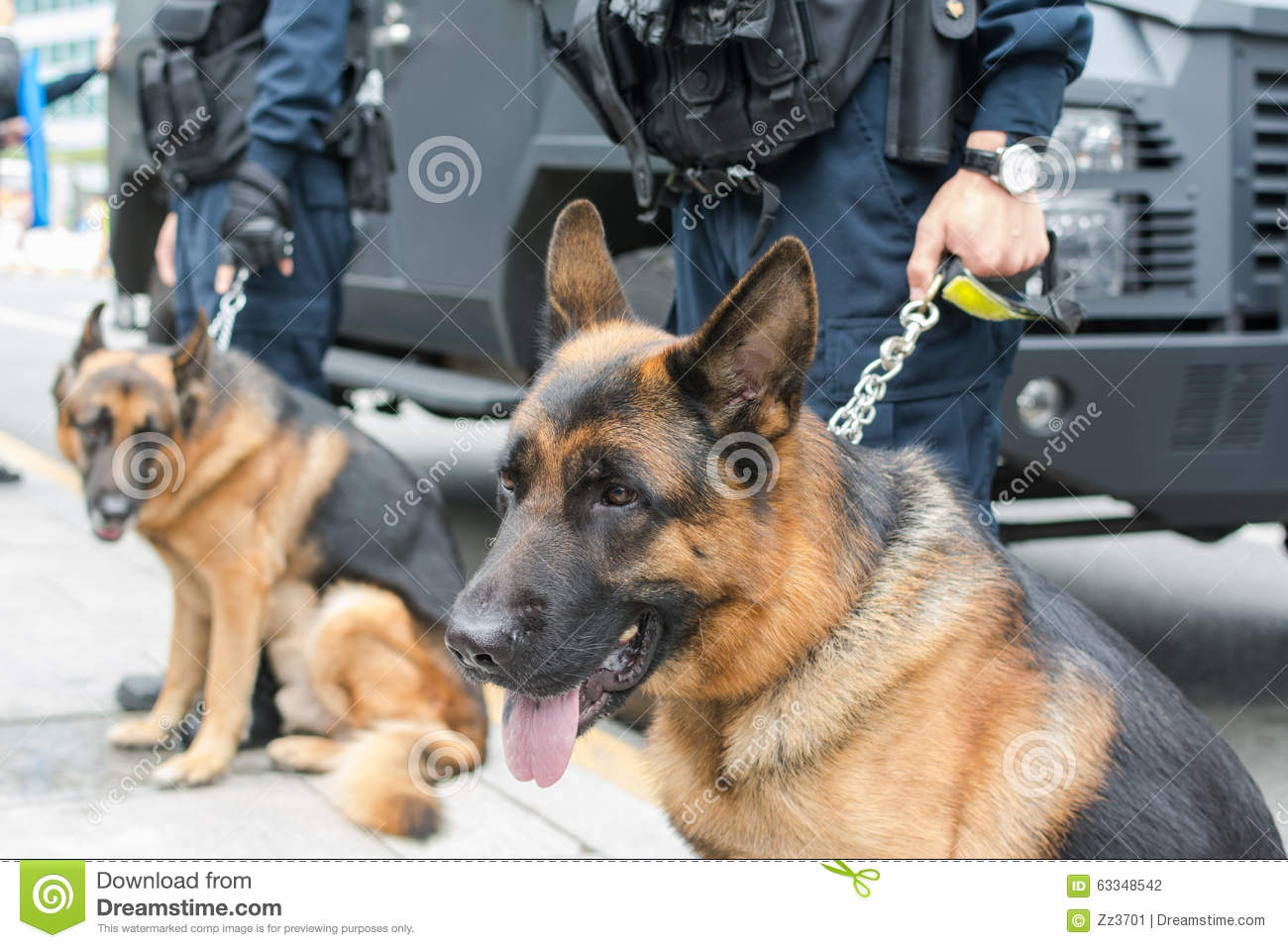 how to become a police dog trainer in canada