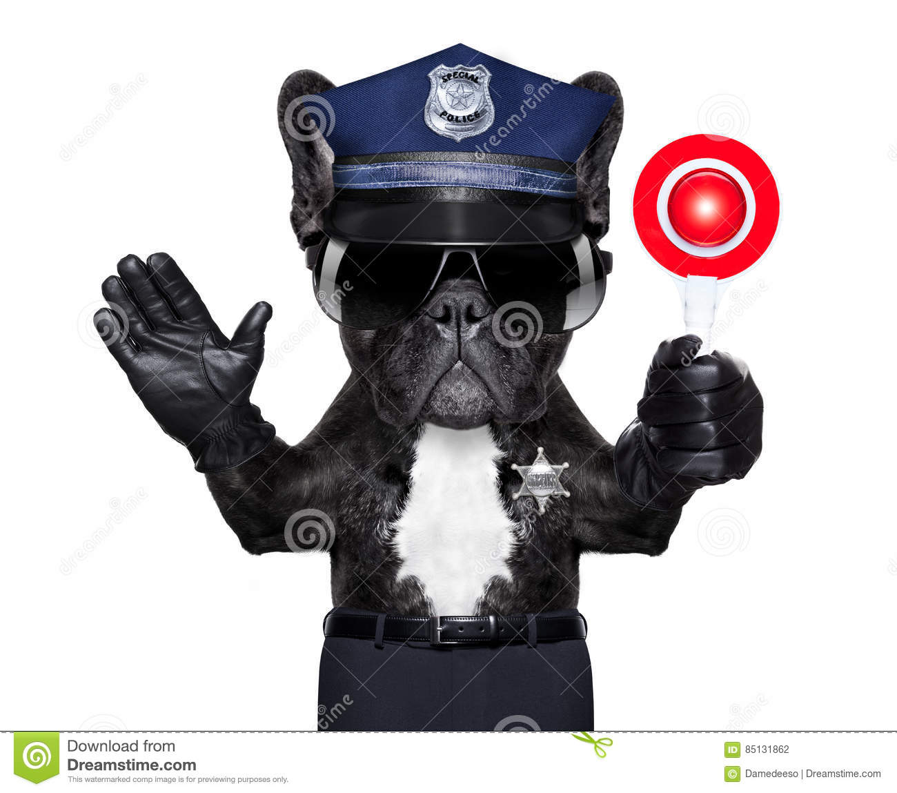 Policeman with stop sign