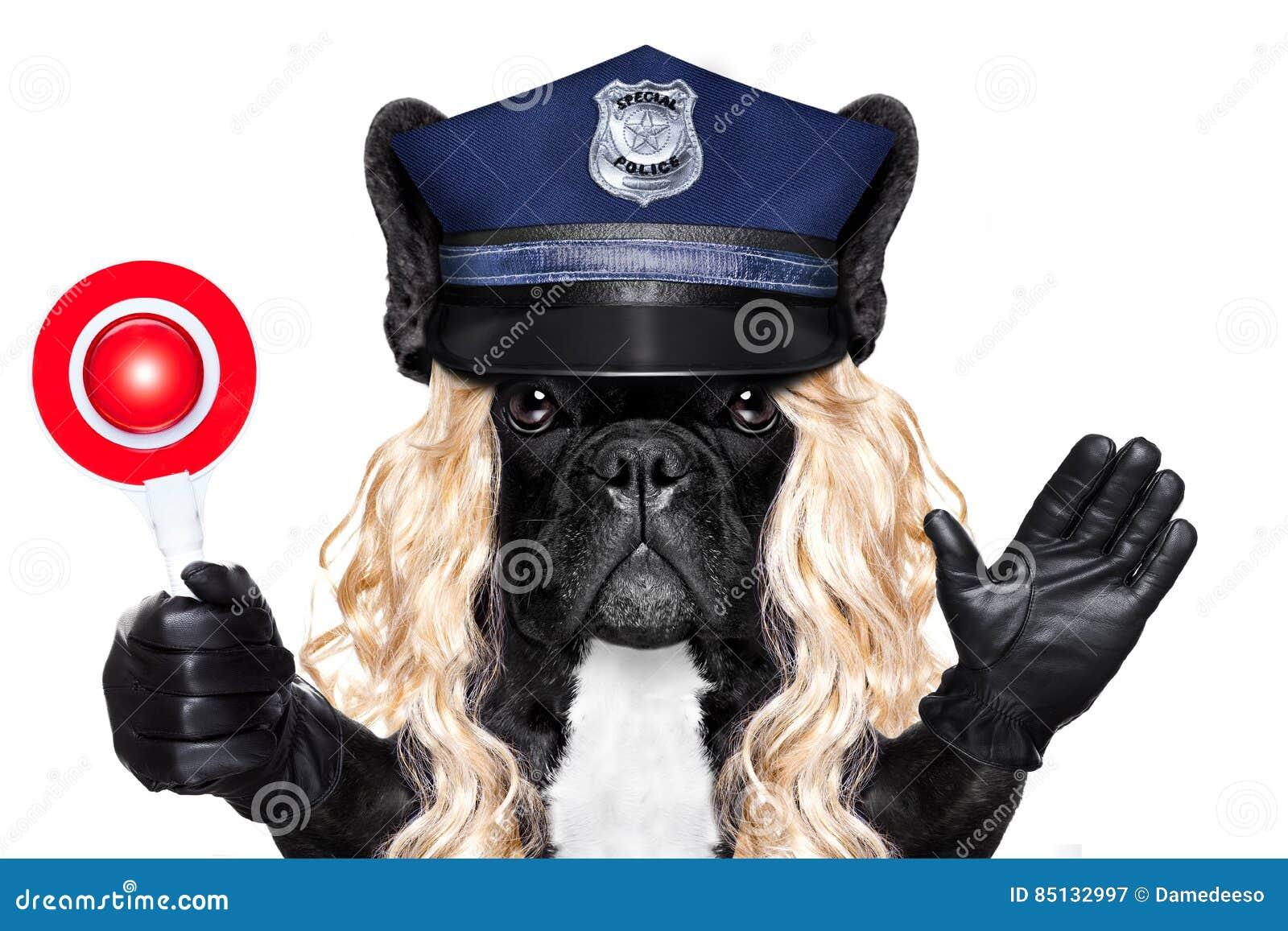 Policier ou policière avec le chien avec le signe d arrêt