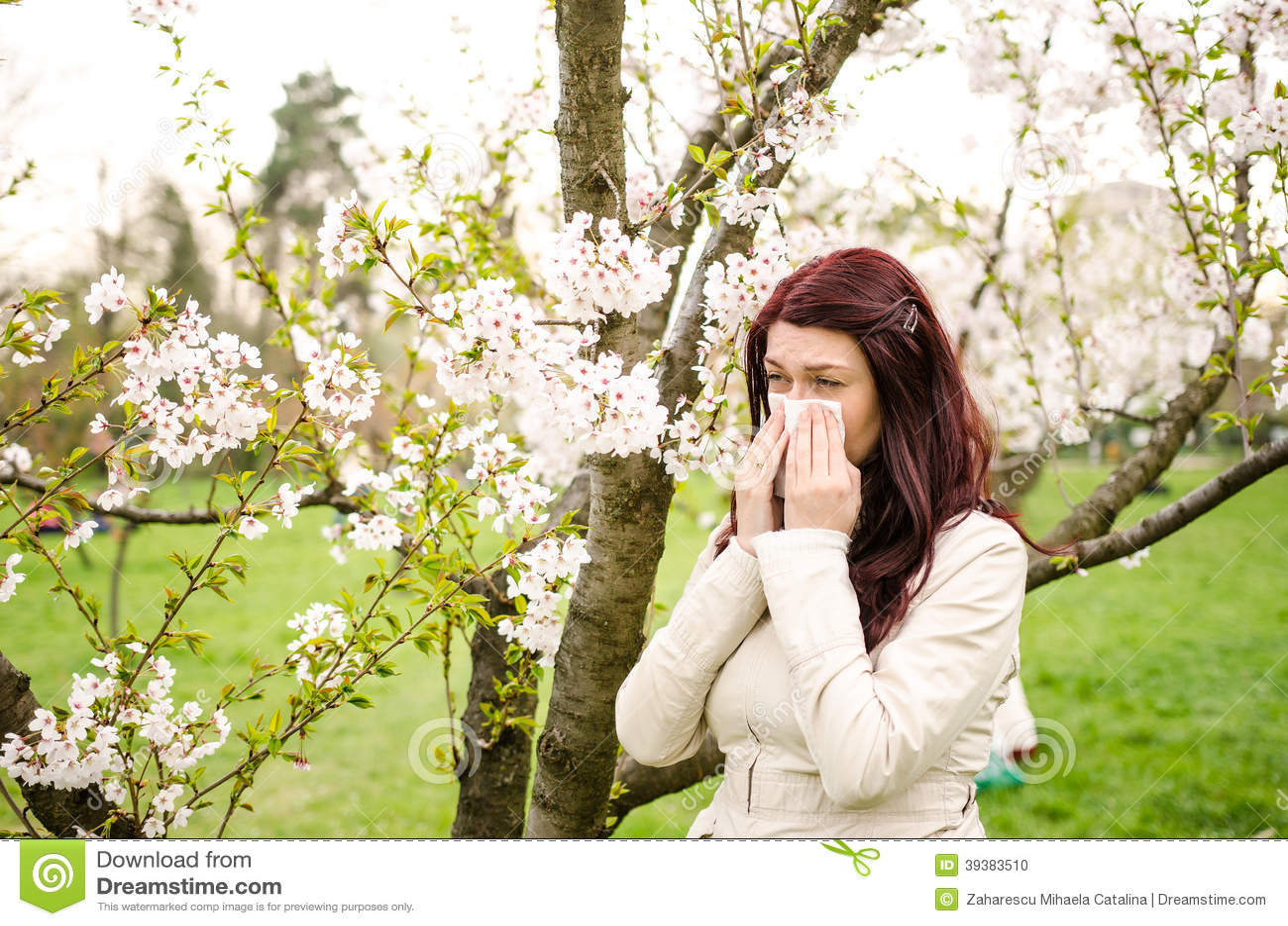 Pollen alergia