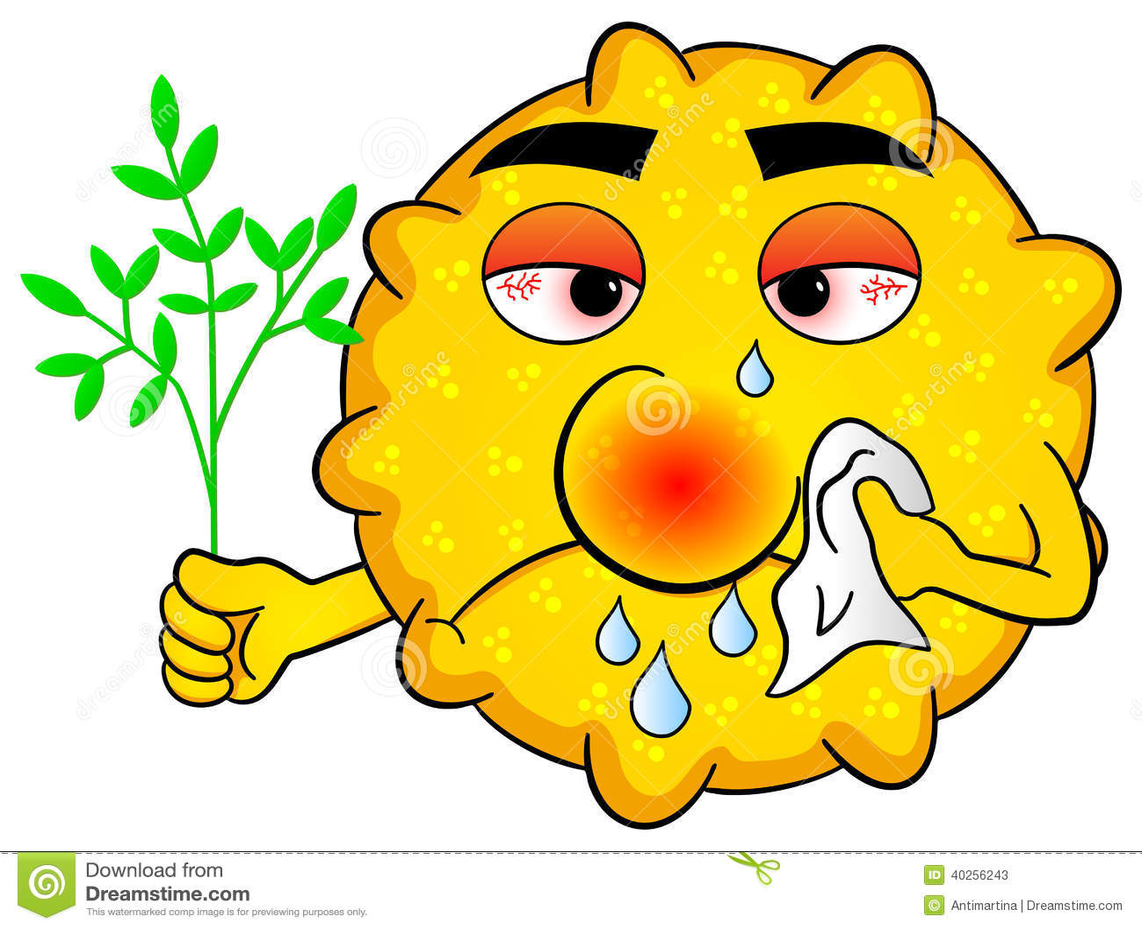 https://thumbs.dreamstime.com/z/pollen-hay-fever-vector-illustration-40256243.jpg