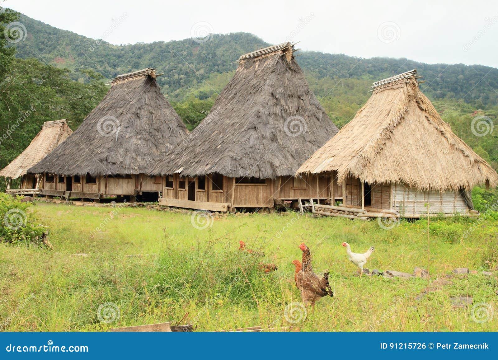 Polli dalle case tradizionali in museo all 39 aperto in for Case tradizionali