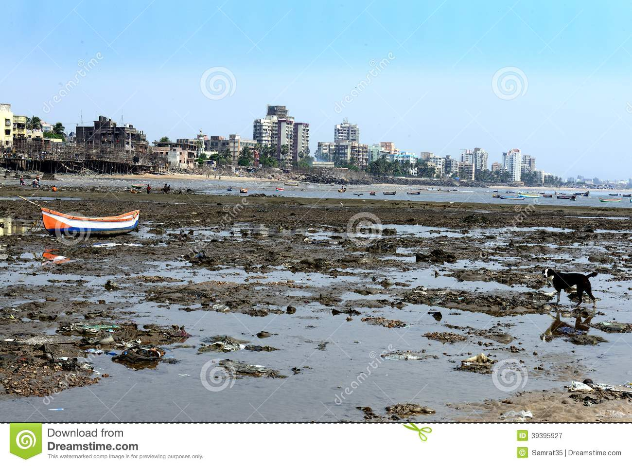 water contamination in mumbai Find mumbai water shortage latest news, videos & pictures on mumbai water shortage and see latest updates, news, information from ndtvcom explore more on mumbai water shortage.