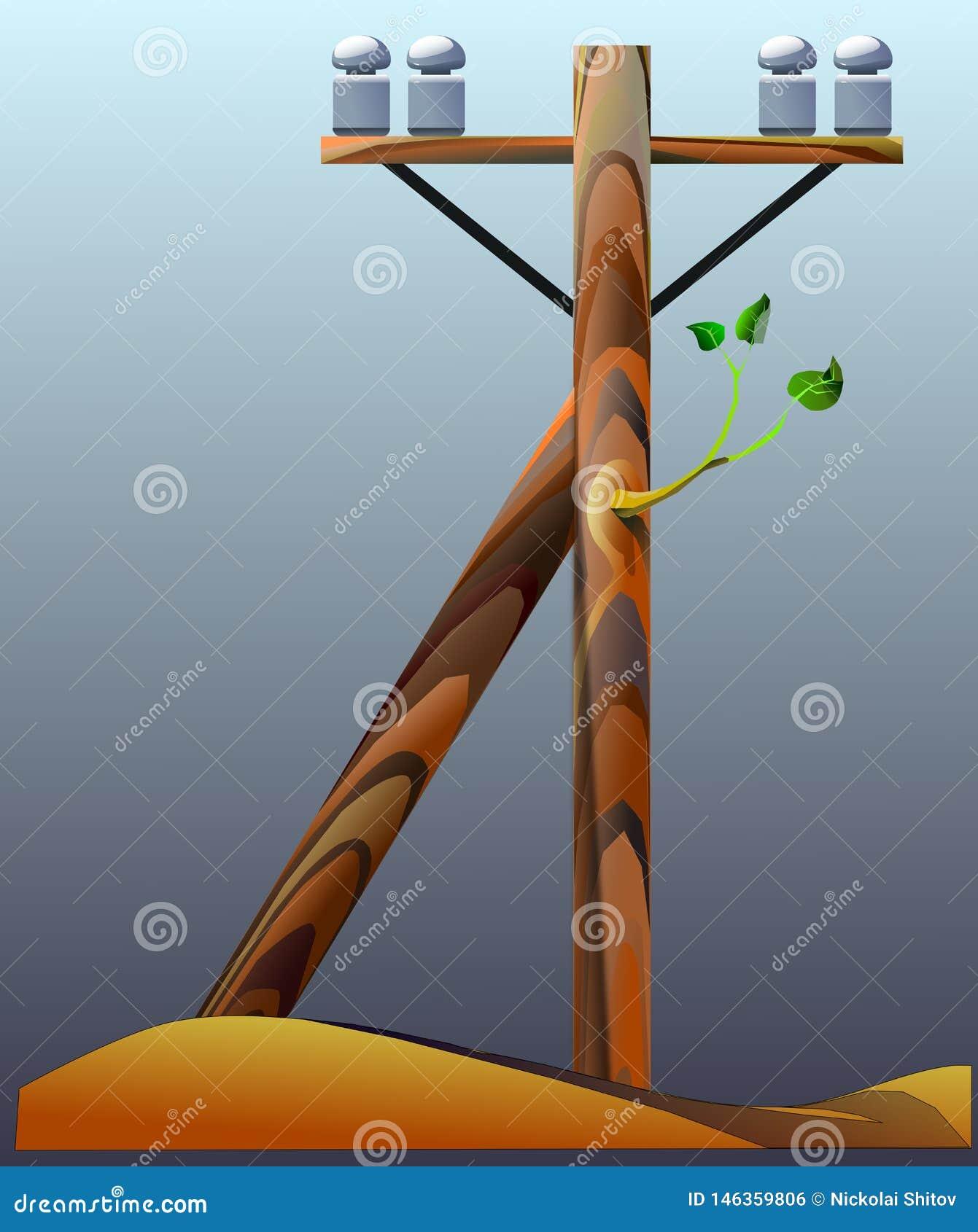 Polo de tel?grafo de madeira