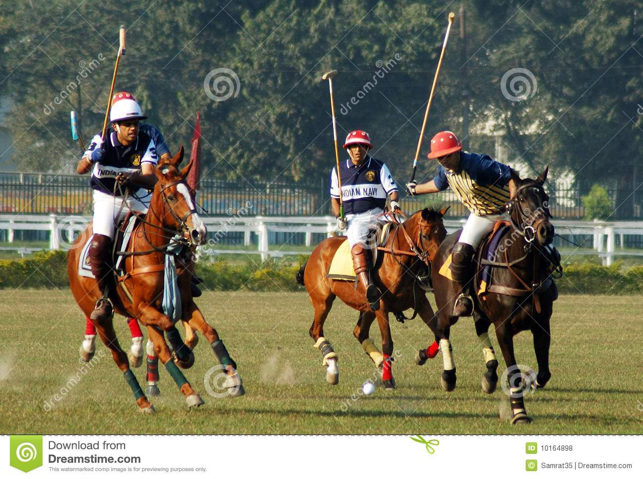 a game of polo with a From a game of polo with a headless goat emma levine travelled throughout asia researching and filming unusual sports in this passage she writes about a donkey race in.