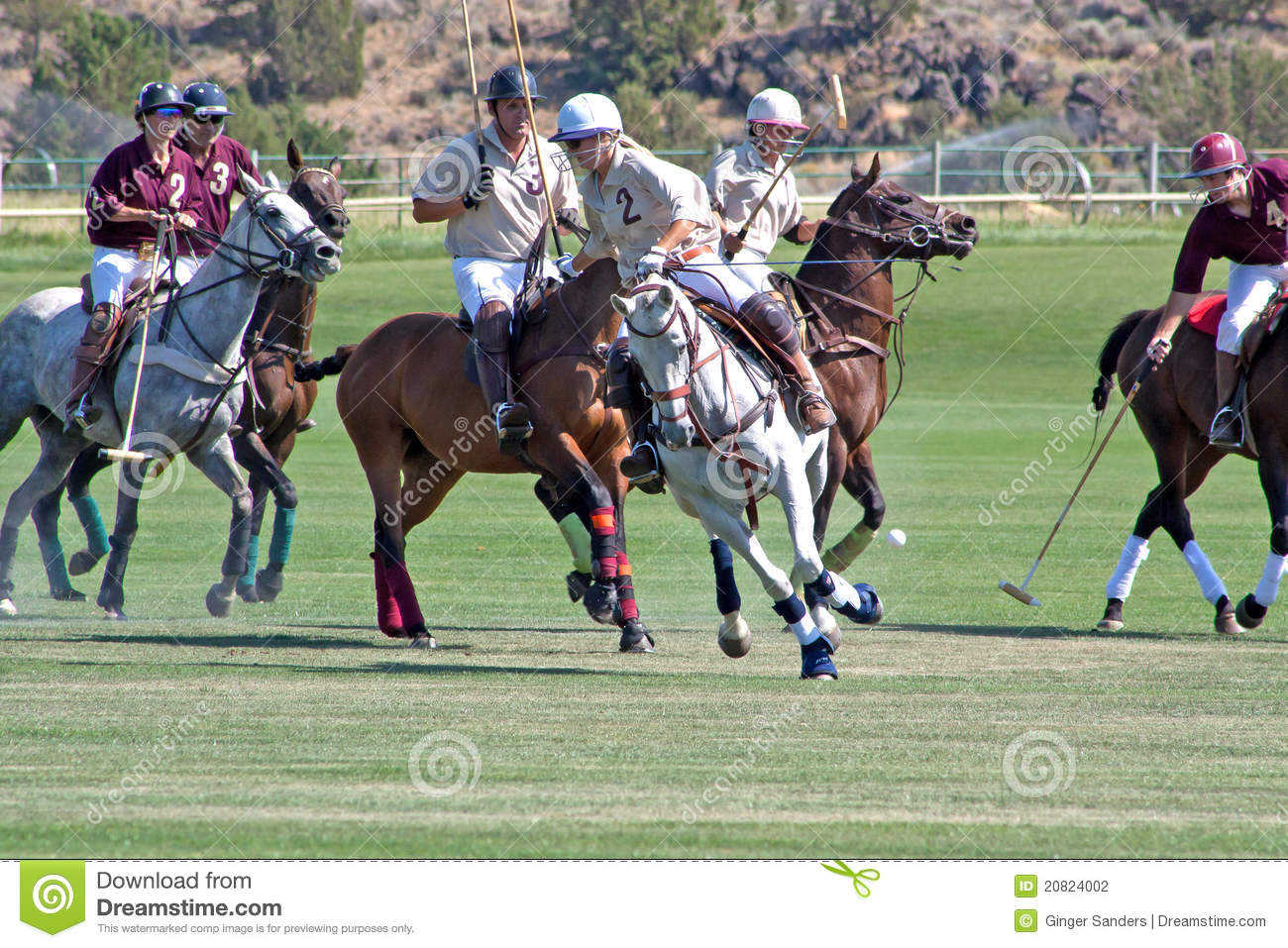 Polo On The High Desert In Oregon