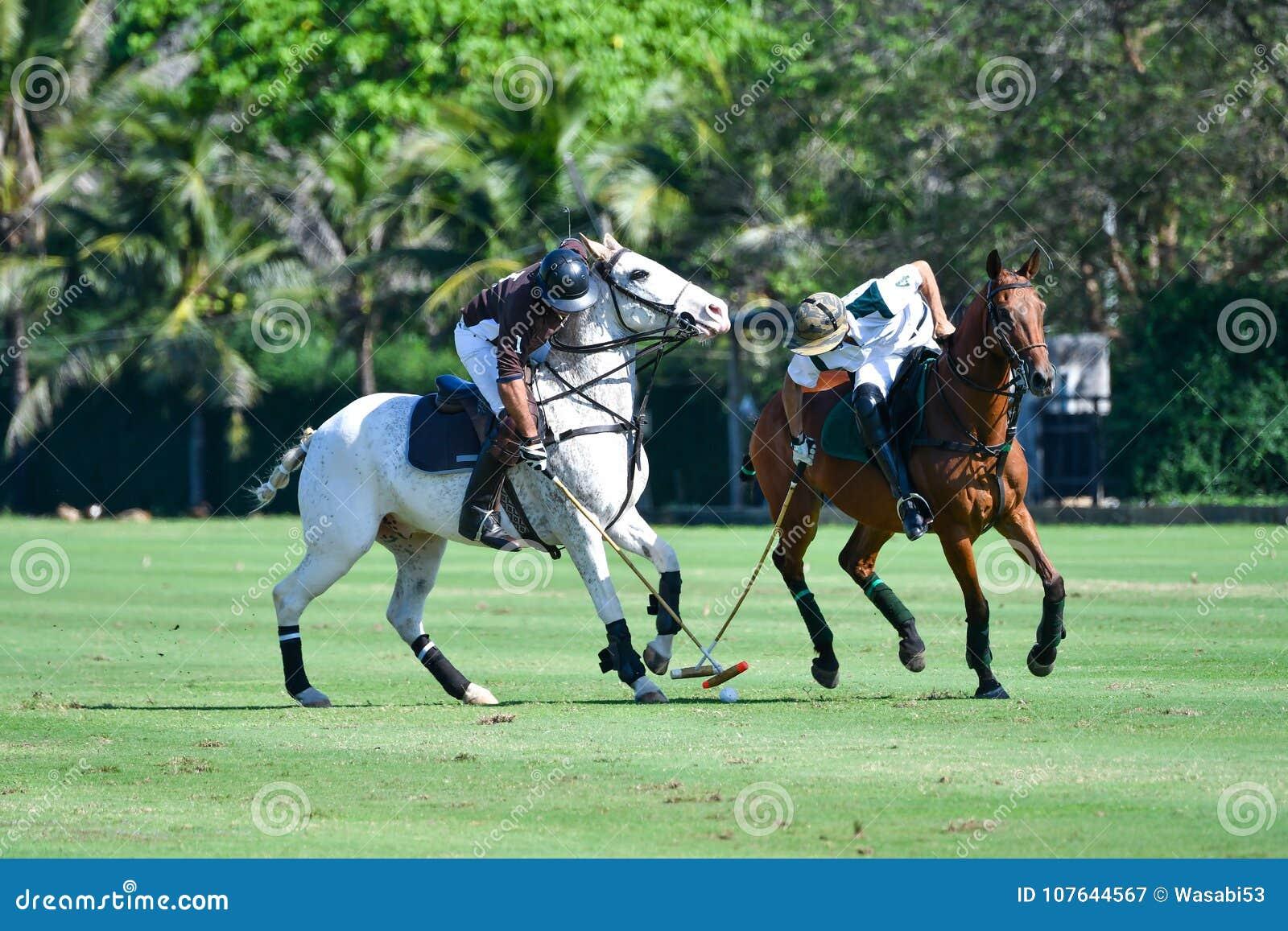Polo Player skyddar en poloboll