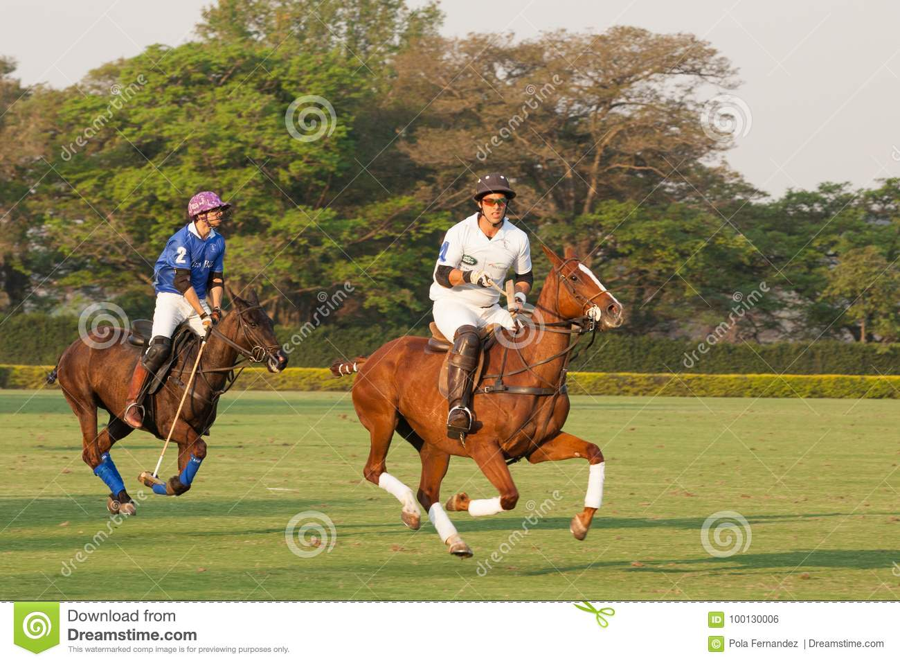 Polo tournament editorial photo. Image of