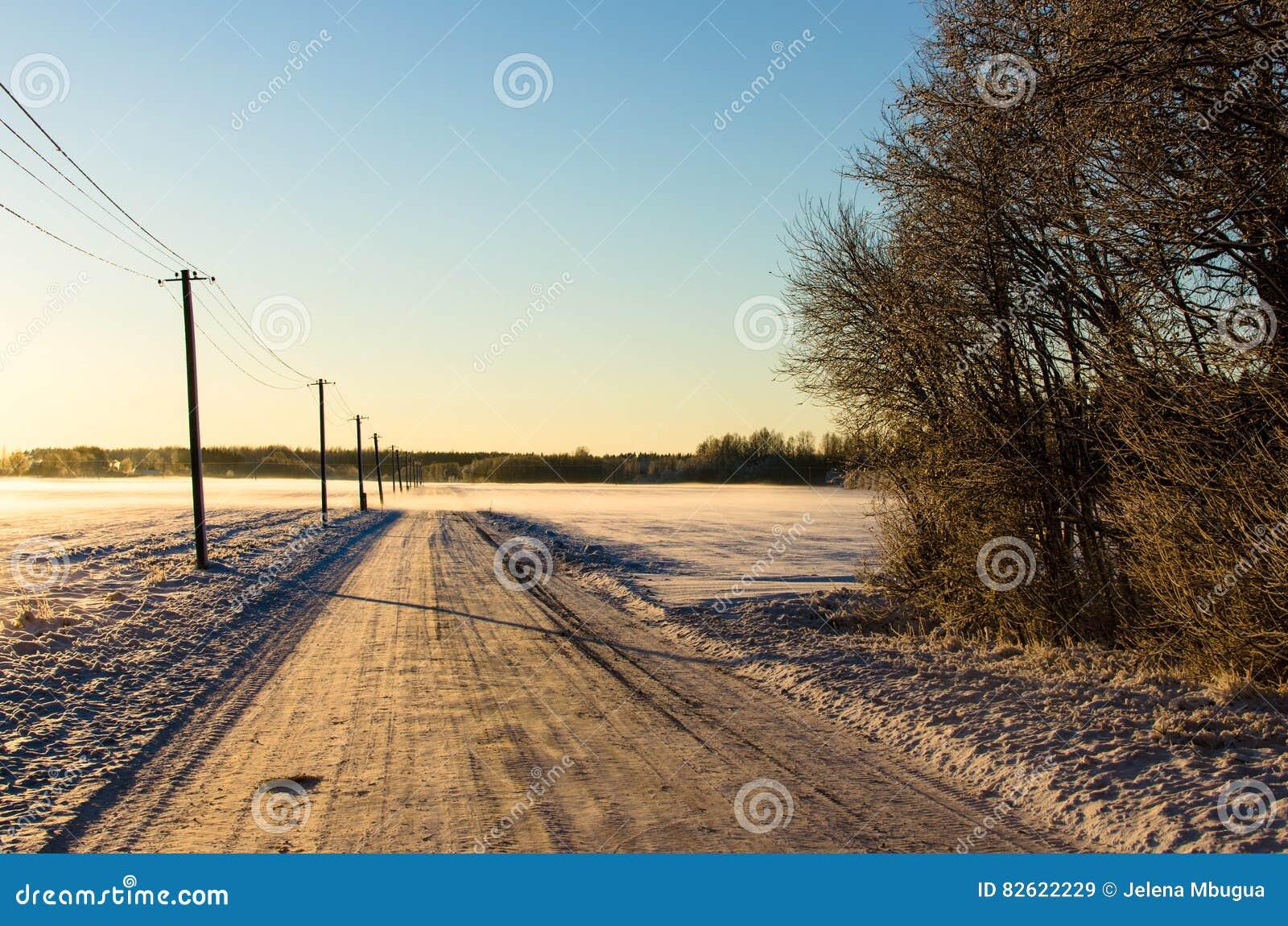 Polos de teléfono por un camino nevoso del campo