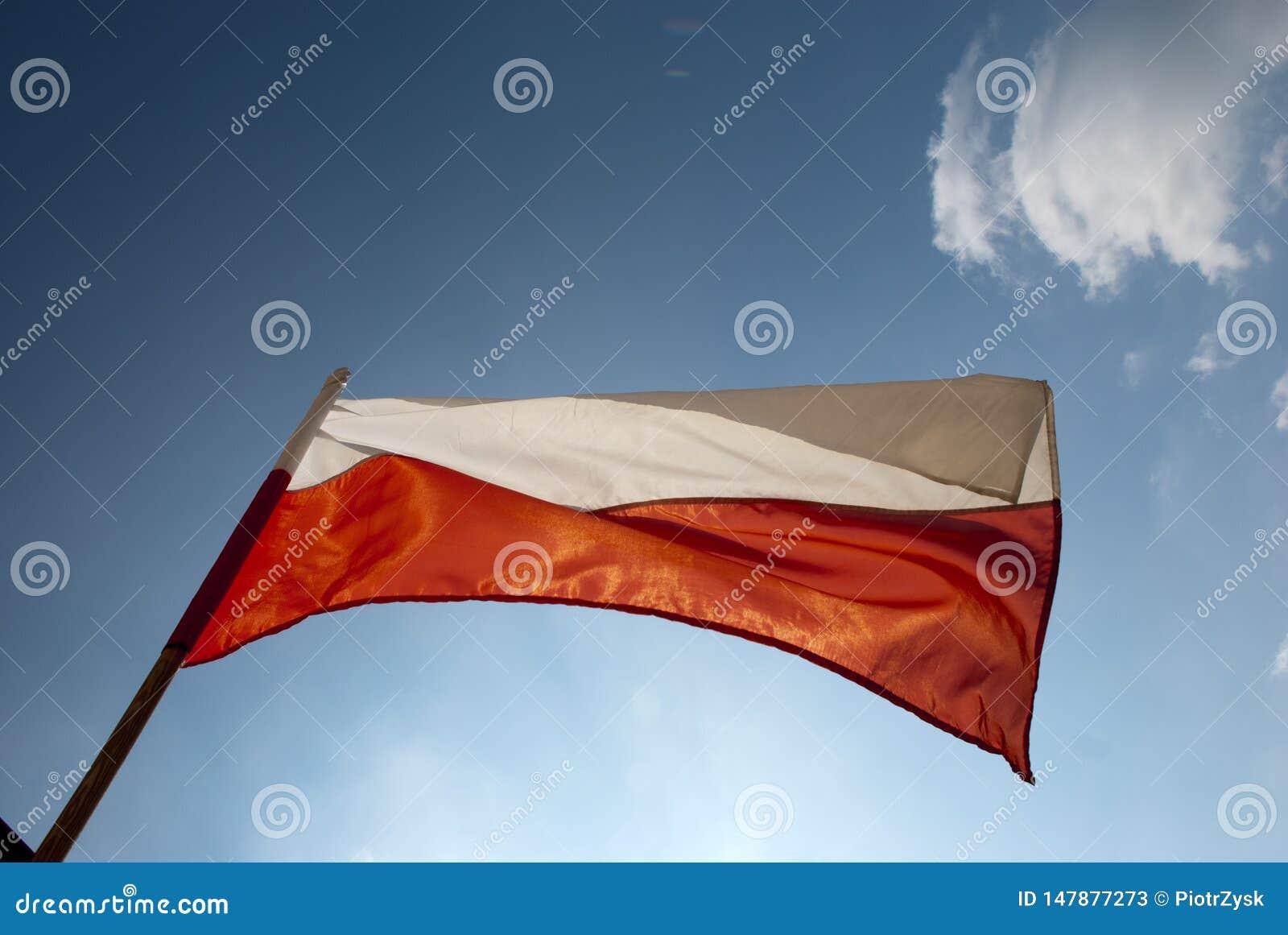 Polska flaga w niebie