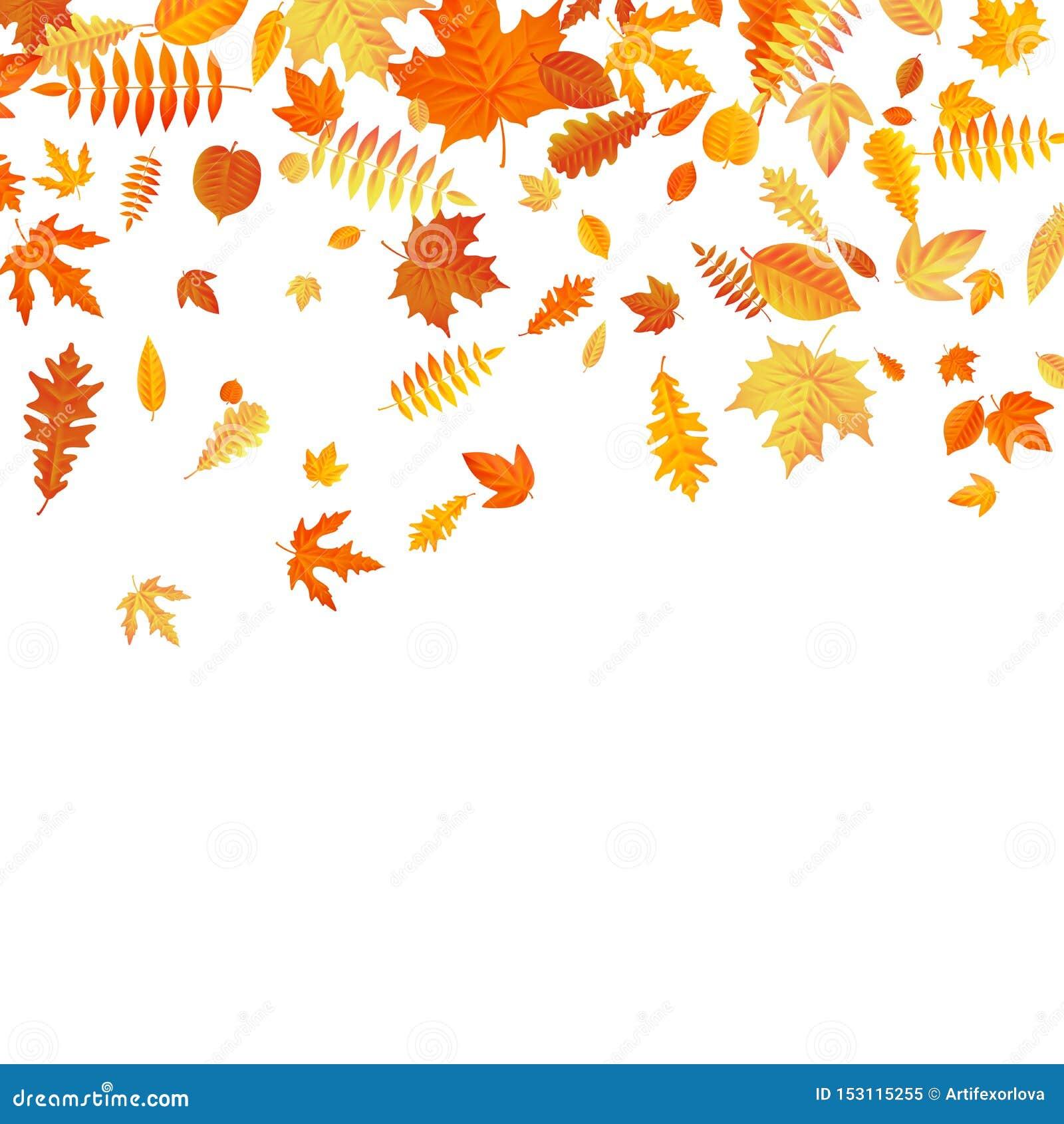 Pomarańcze i żółty spada jesień liści szablon 10 eps