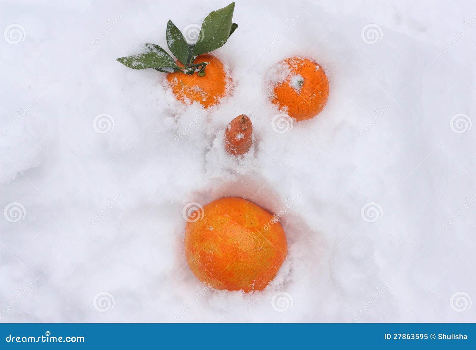 Pomarańcze na śniegu