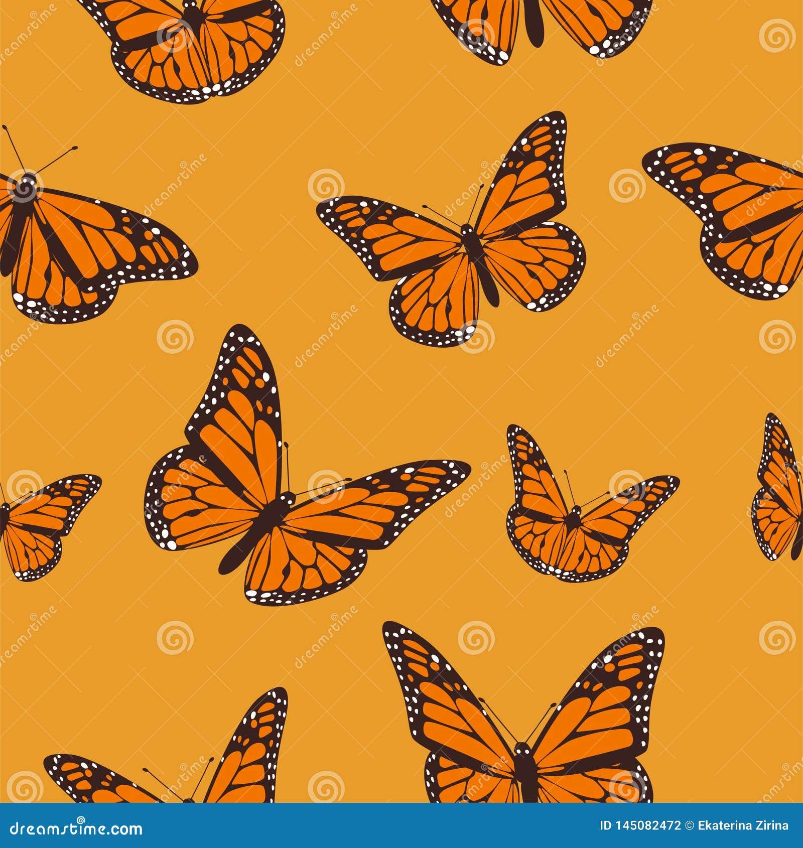 Pomara?czowy motyli monarcha na ?wietle - pomara?czowy t?o bezszwowy wzoru 10 eps ilustracyjny os?ony wektor