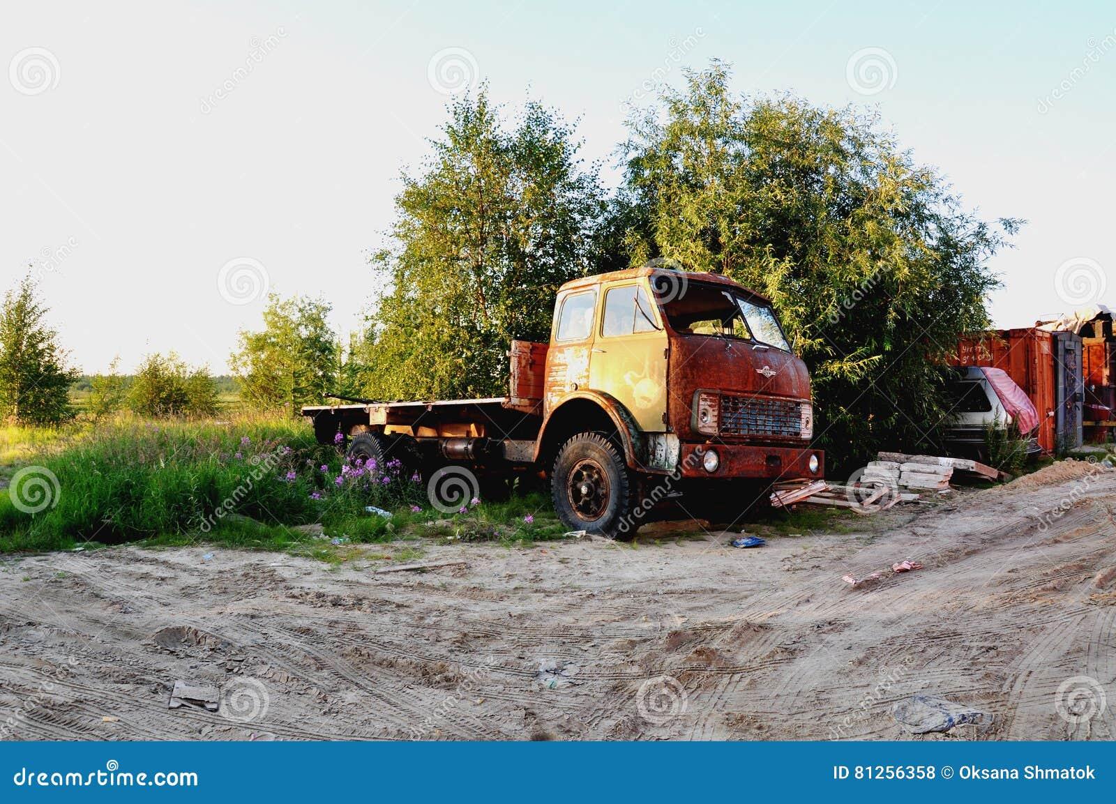 Pomarańczowy stary ciężarówka pobyt przy drzewem