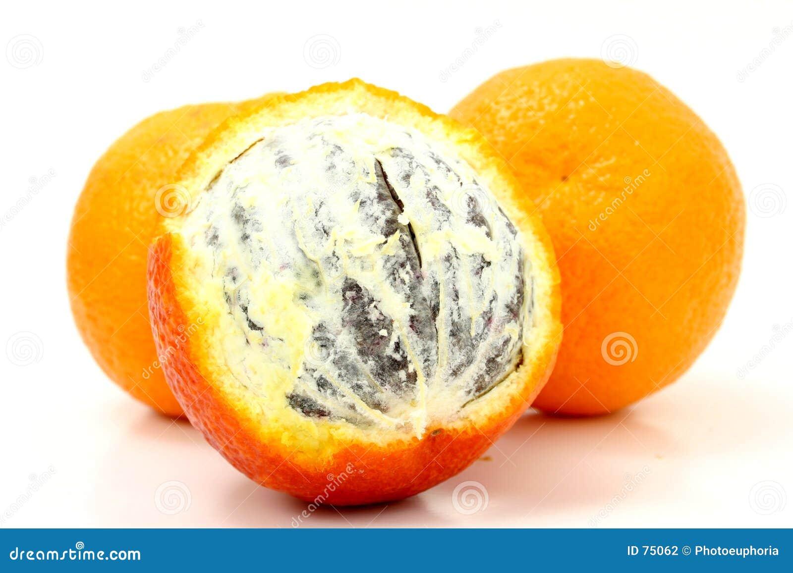 Pomarańcze krwi