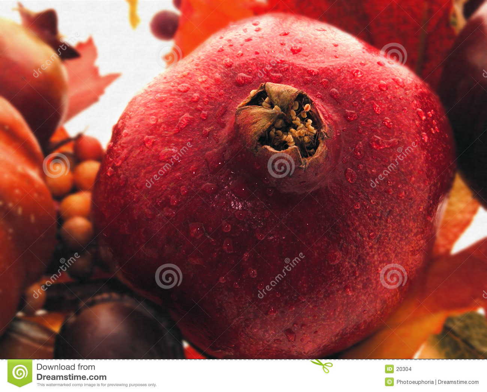 Pomegranate жизни все еще