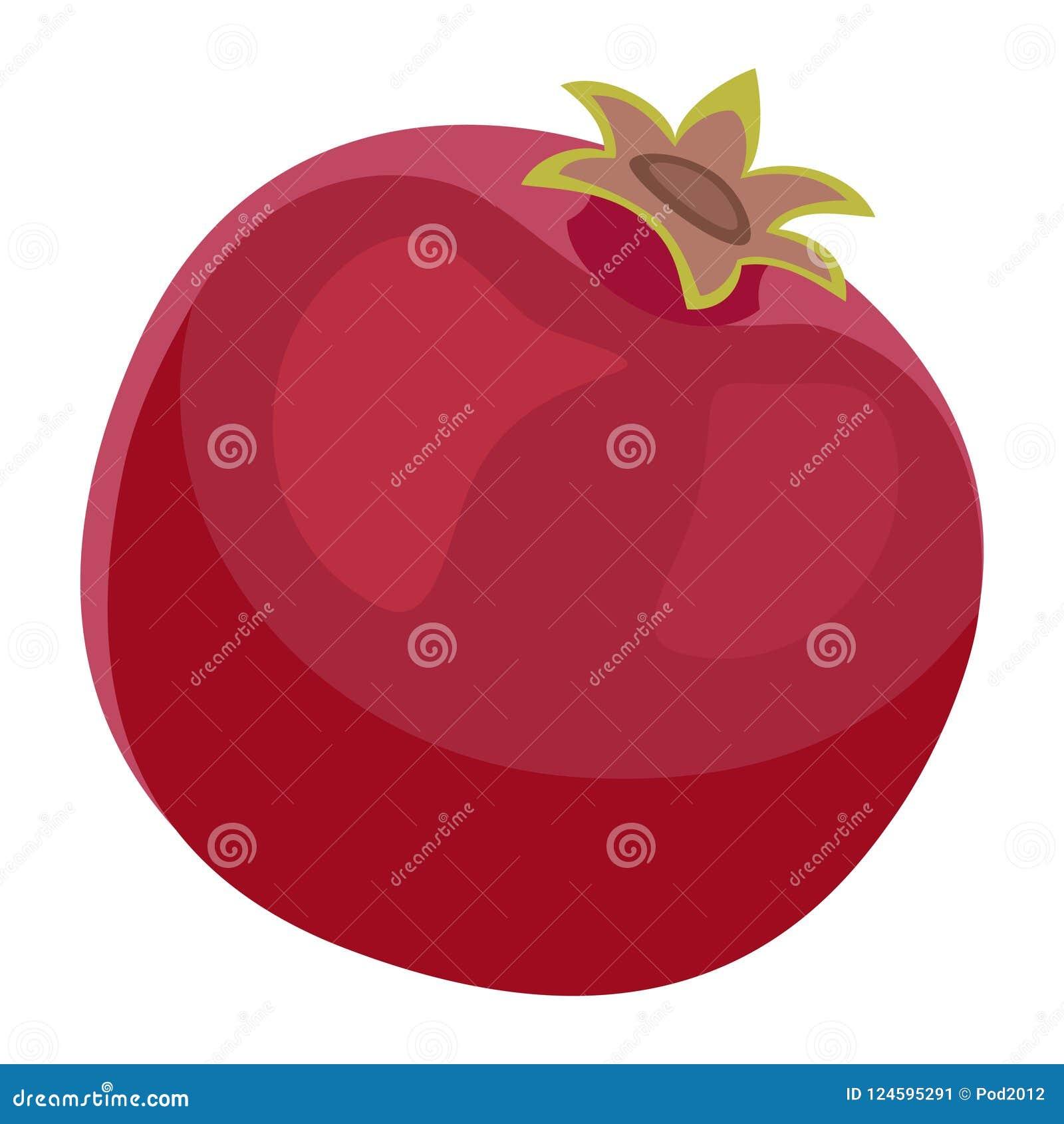 Pomegranate Fruit Design Juicy Fresh Icon Template.