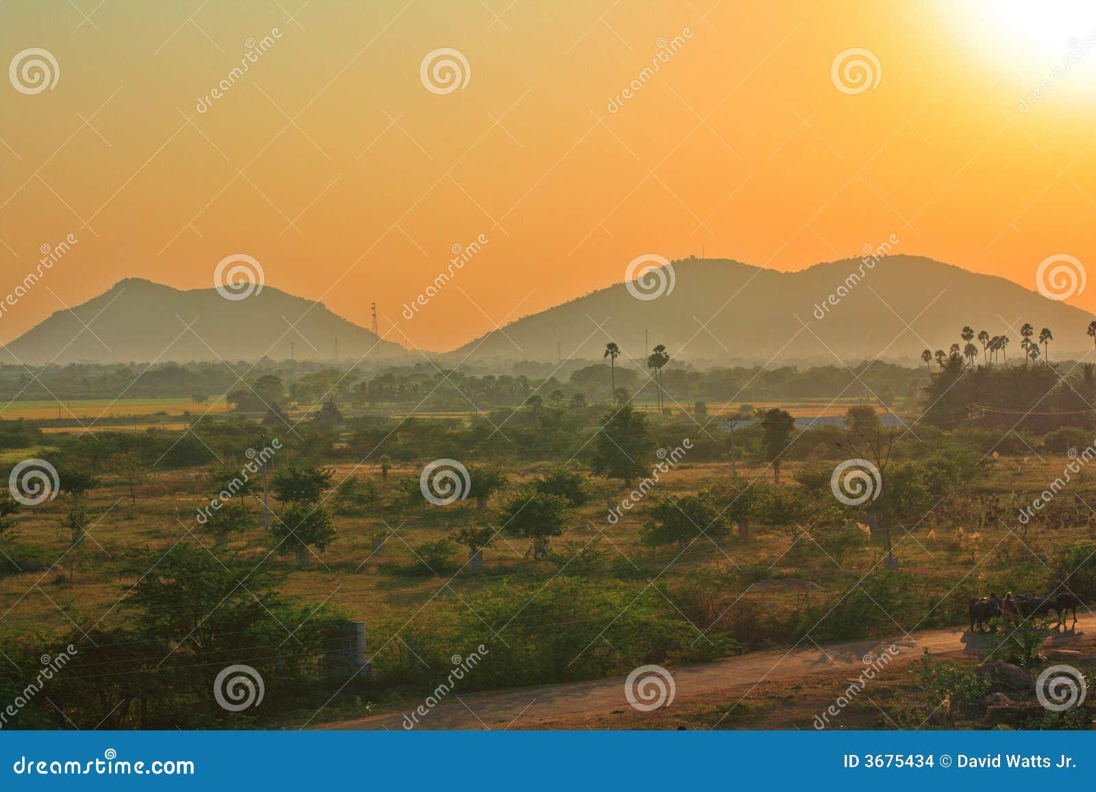Download Pomeriggio indiano Sun fotografia stock. Immagine di sole - 3675434