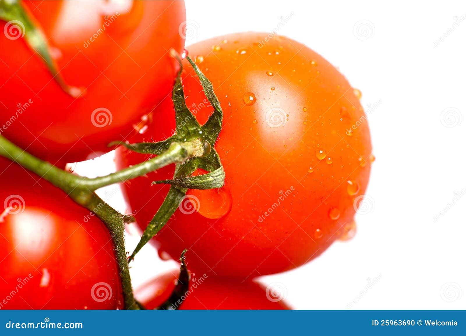 Pomidor Świeżość
