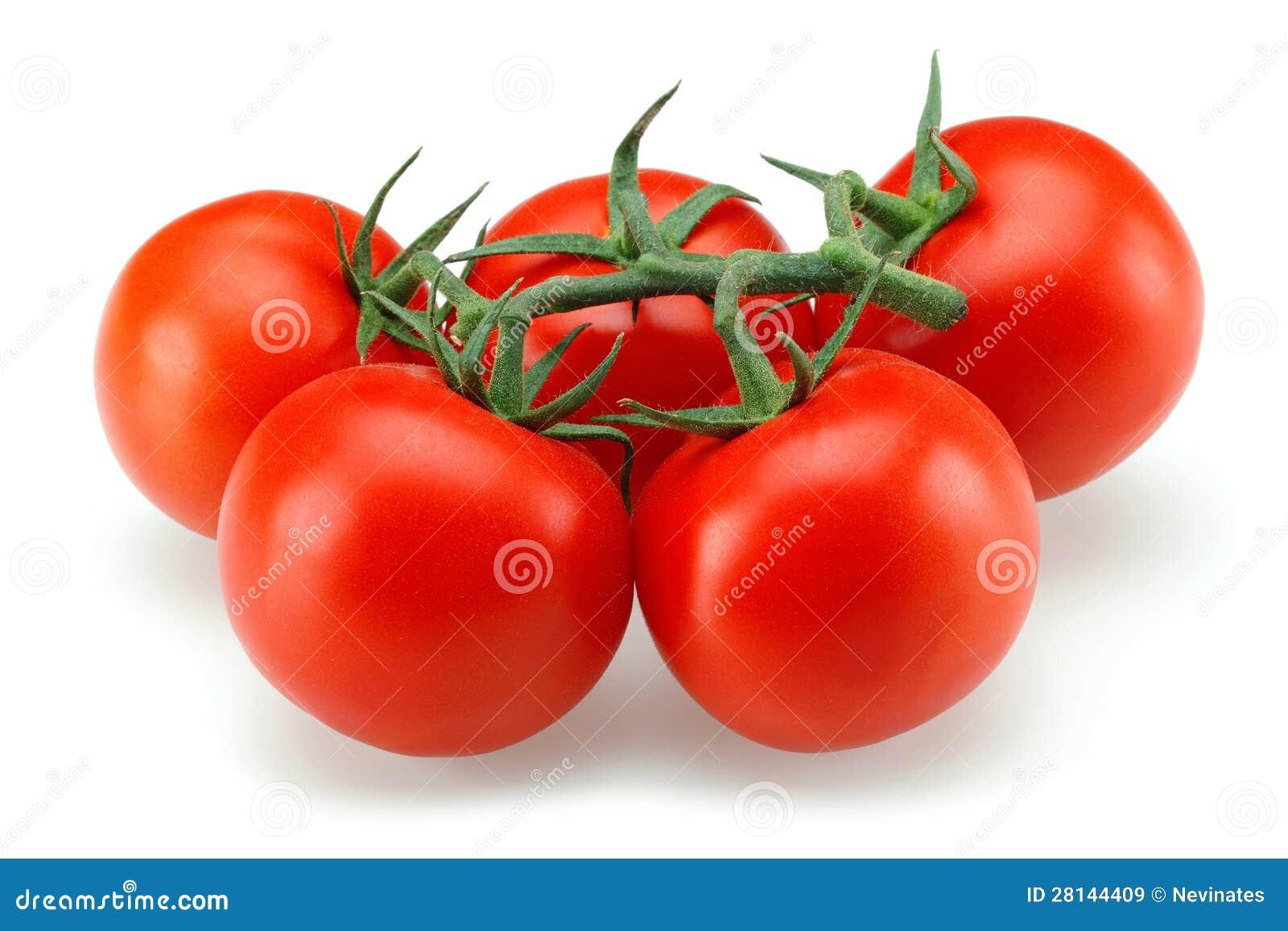 Pomidor grupa